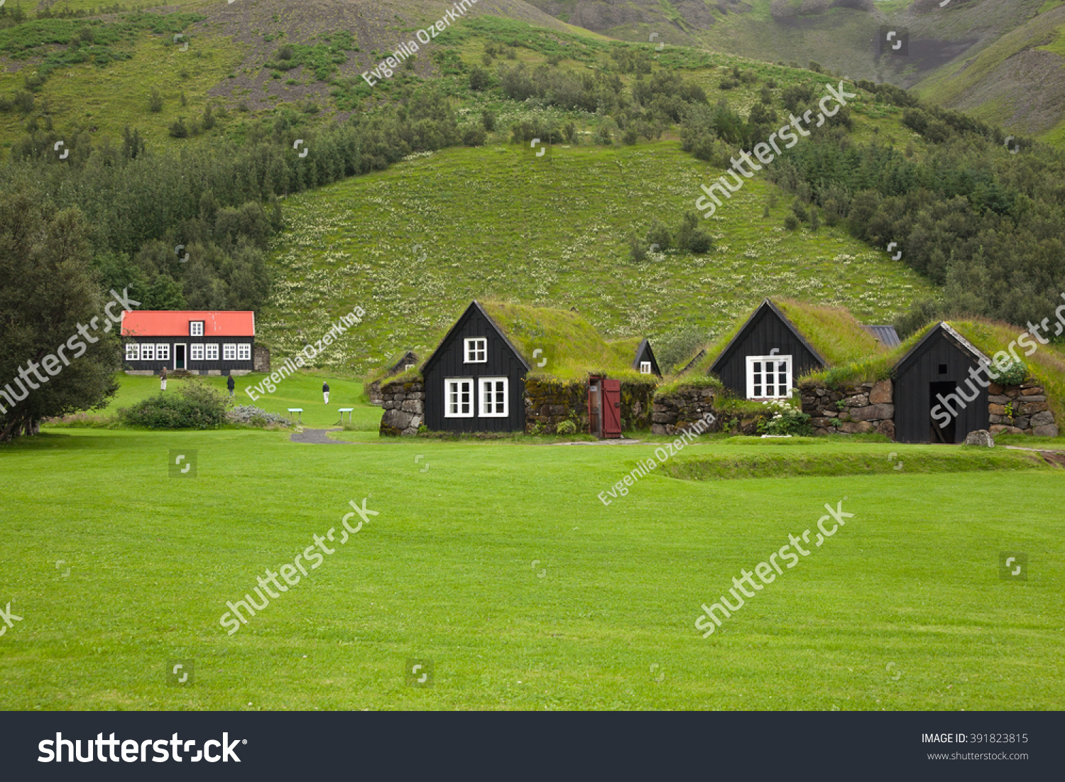houses with grass roofs. Iceland