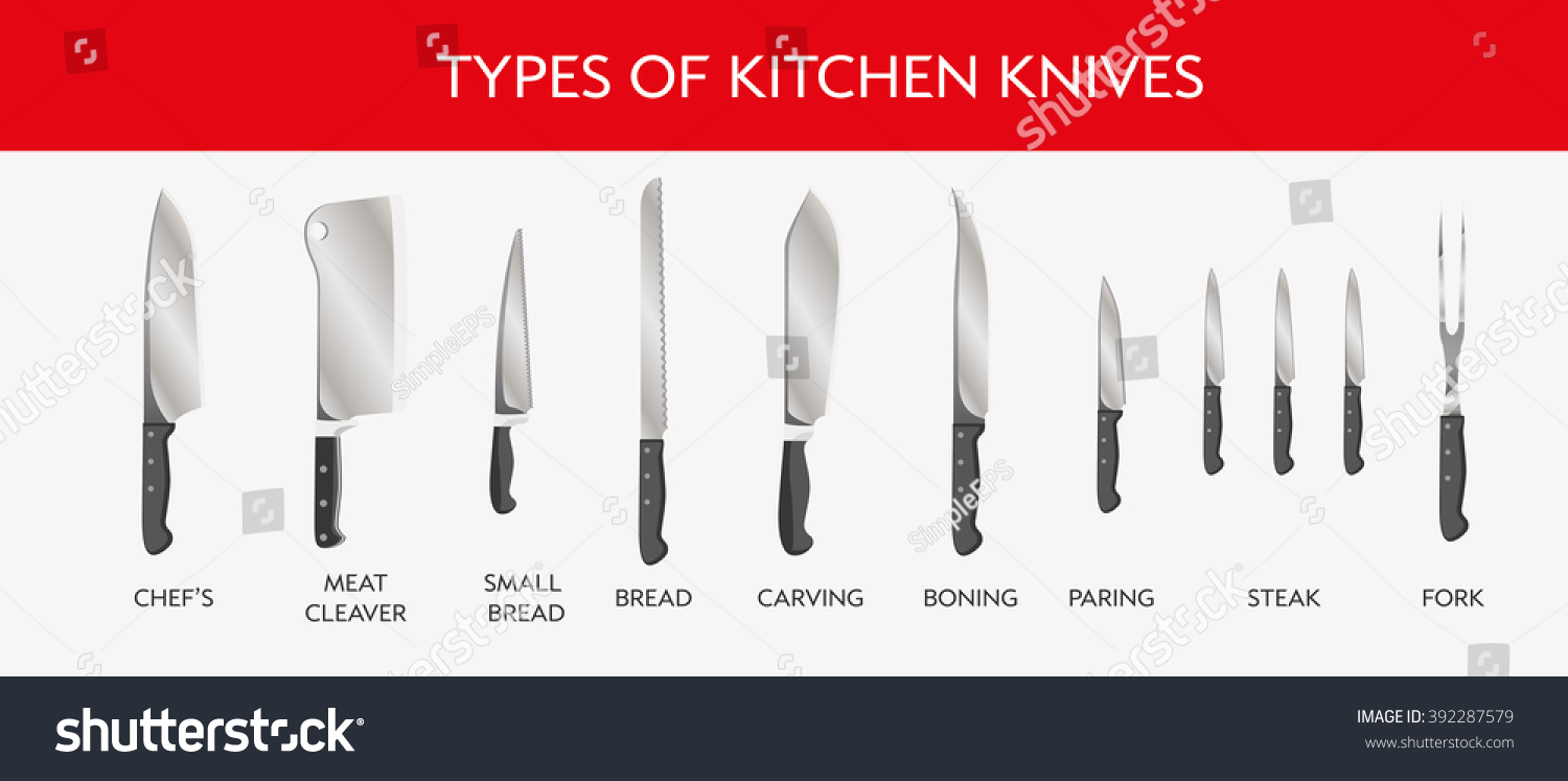 Vector Illustration Types Kitchen Knives Chefs Stock Vector HD ...