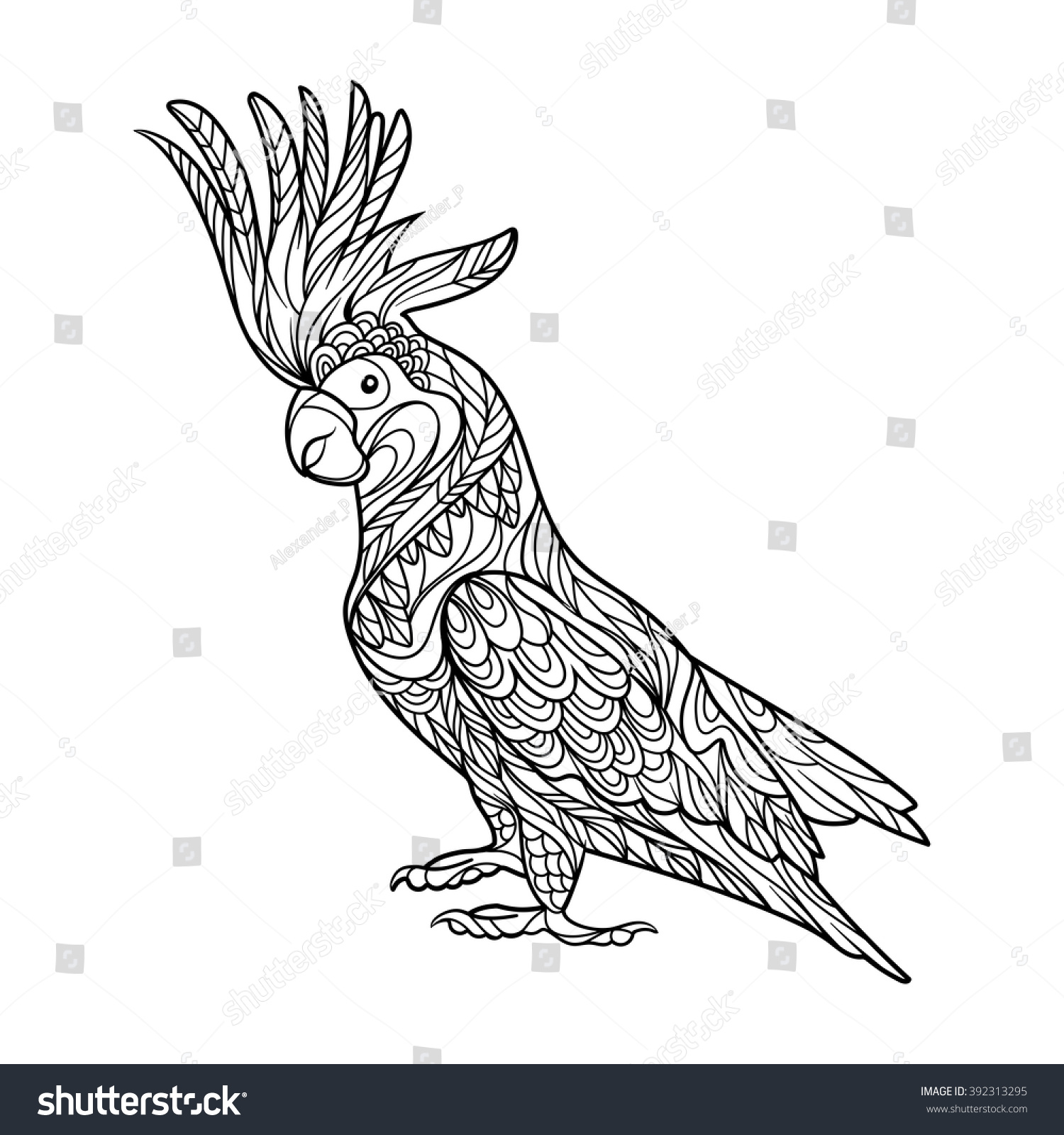 Cockatoo Parrot Bird Coloring Book For Adults Vector Illustration Anti Stress Adult