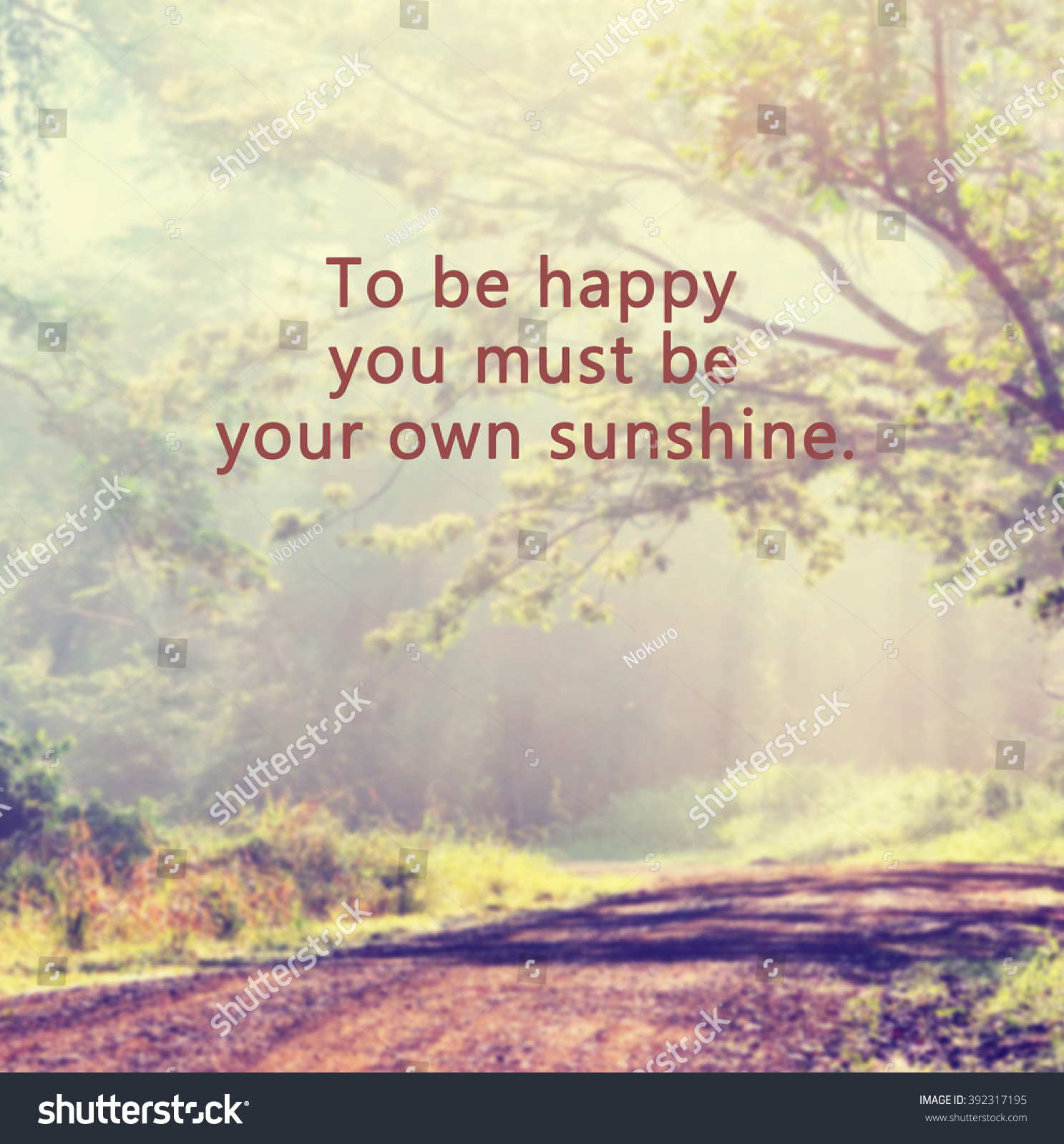 Inspirational Quote Phrase Be Happy You Stock Photo Edit Now