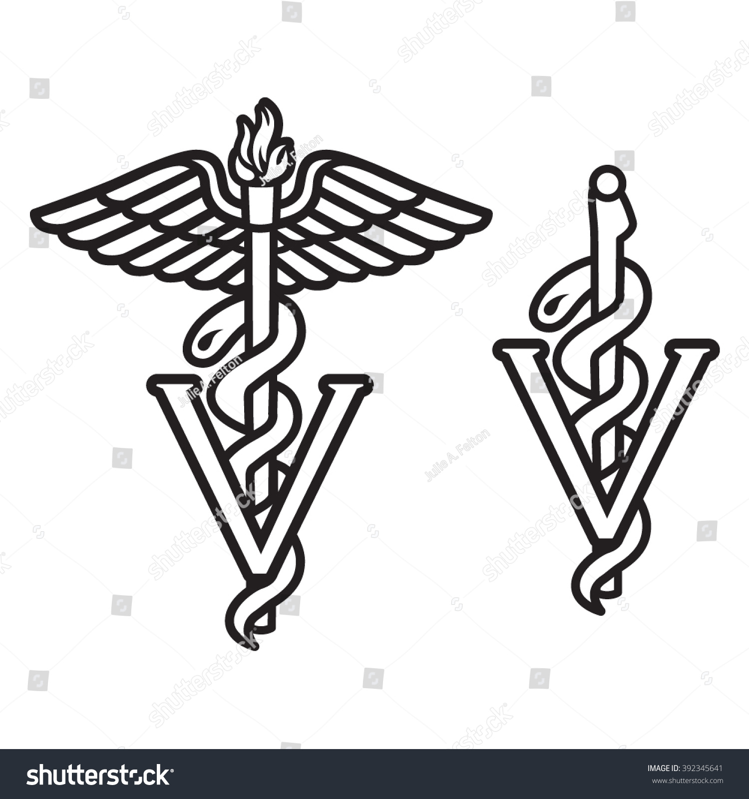 Veterinarian Caduceus Symbol Stock Vector Royalty Free 392345641