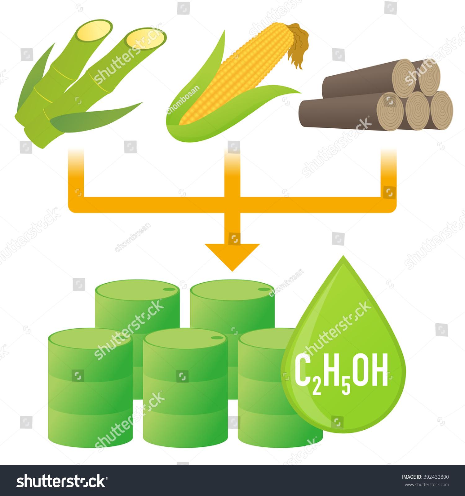 Biofuel biomass ethanol made form sugar stock vector 392432800 biofuel biomass ethanol made form sugar starch cellulose diagram illustration buycottarizona