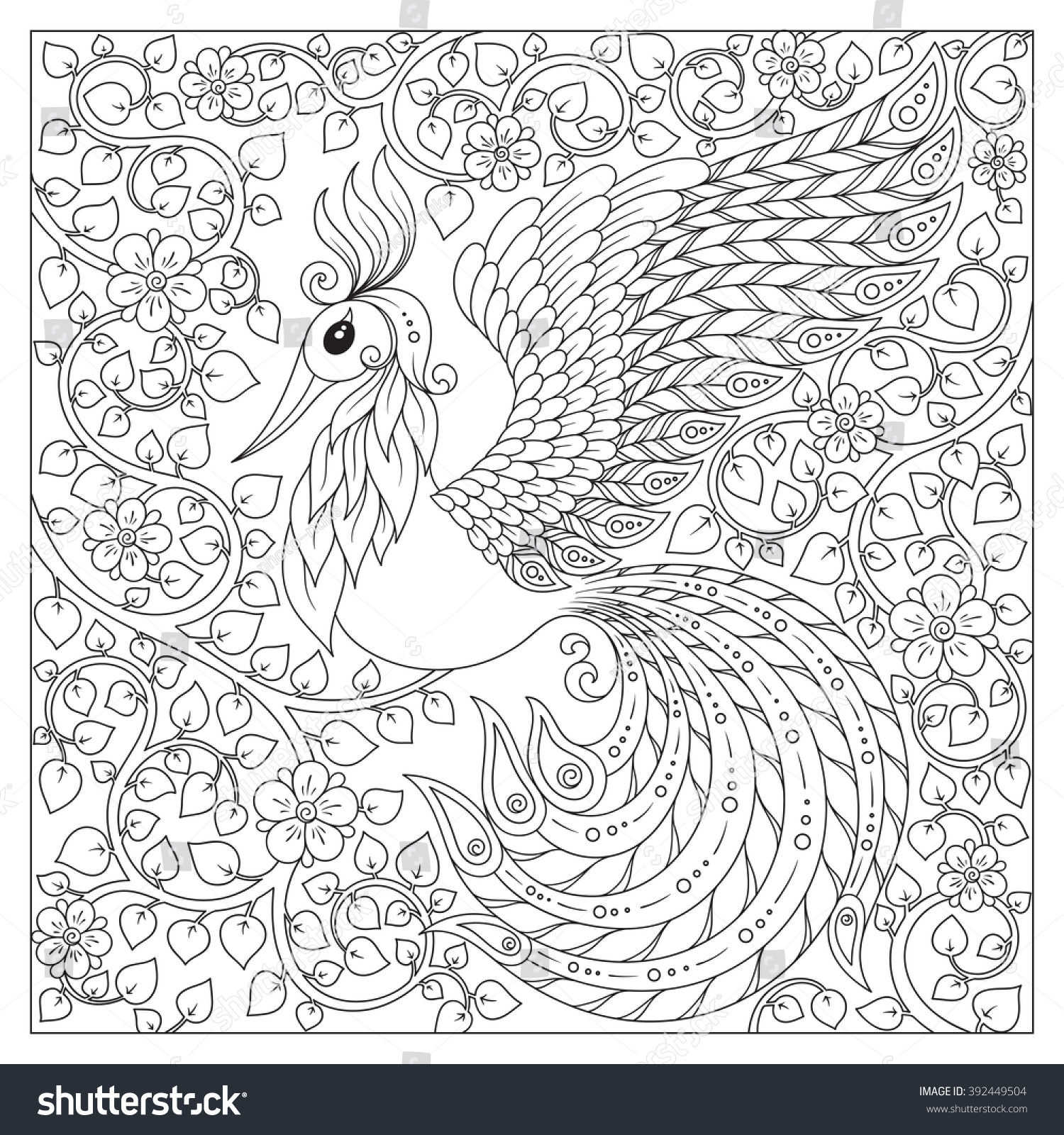 peacock antistress coloring page black stock vector