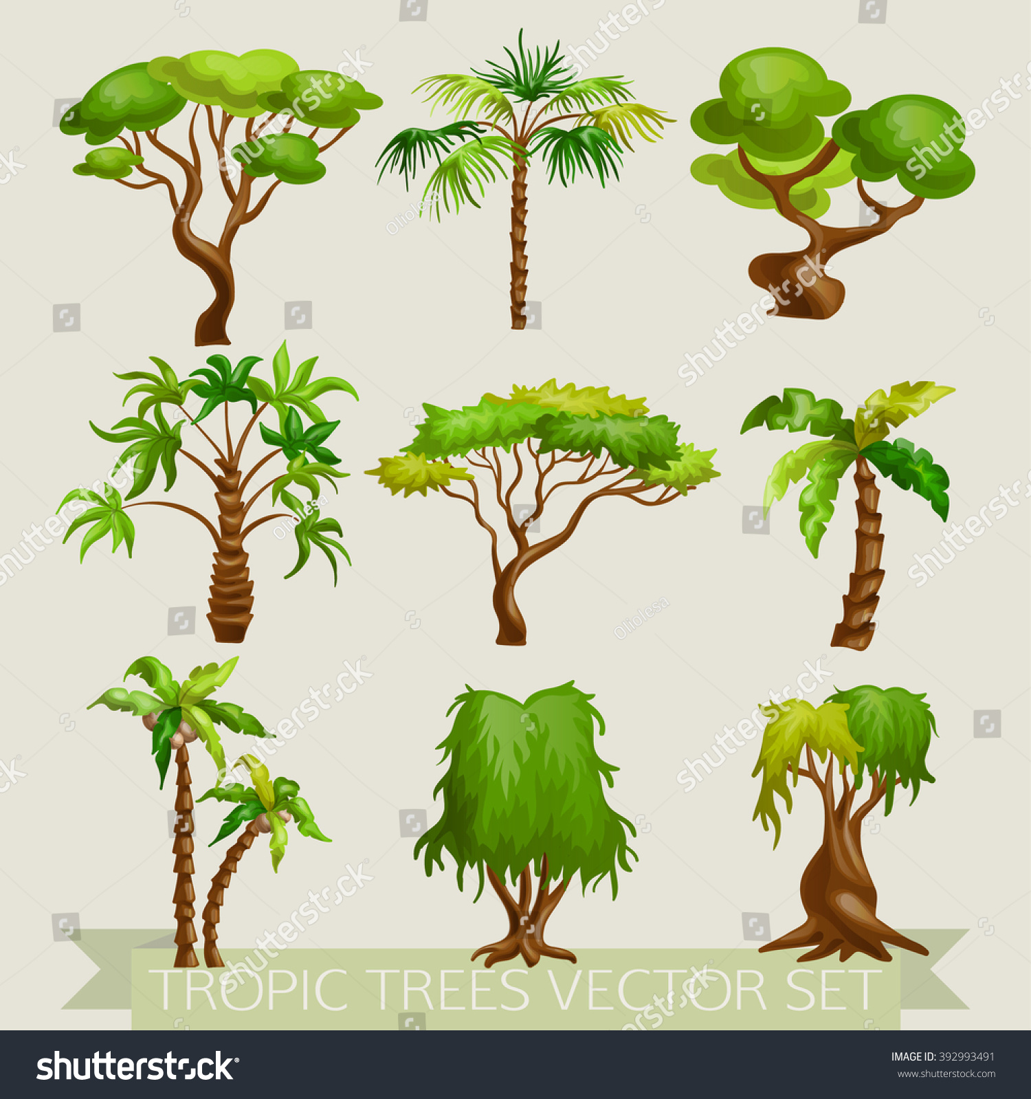 Vector Illustration Colored Tropic Trees Icon Stock Photo (Photo ...