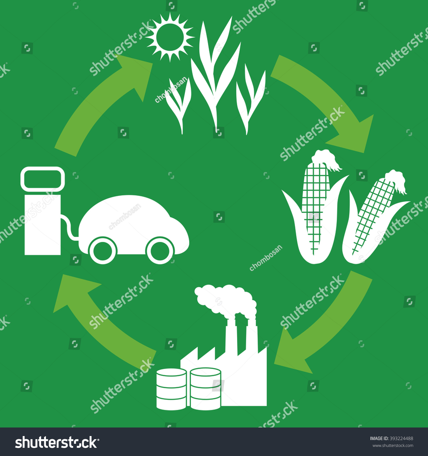 Biofuel biomass ethanol life cycle diagram stock vector 393224488 biofuel biomass ethanol life cycle diagram illustration buycottarizona