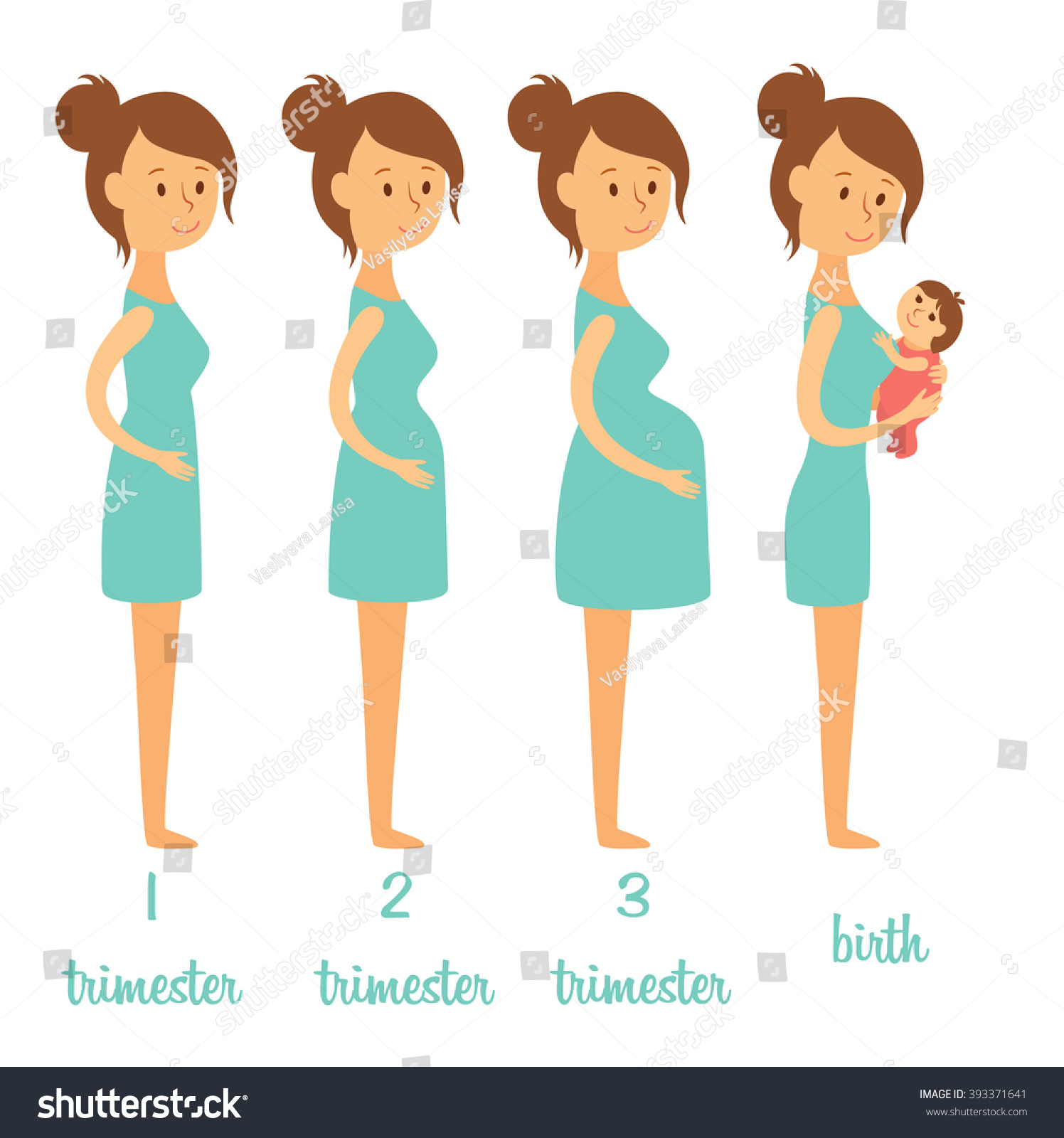 Stages Of Pregnancy. Changing The Woman'S Body During ...