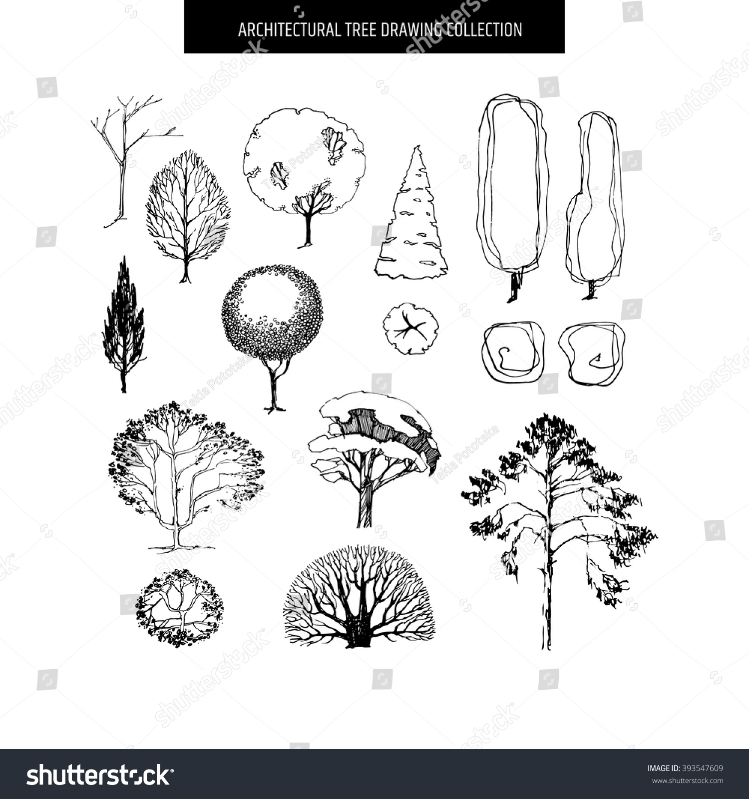 Architecture Drawing Of Trees royalty-free different hand drawn trees isolated on… #393547609
