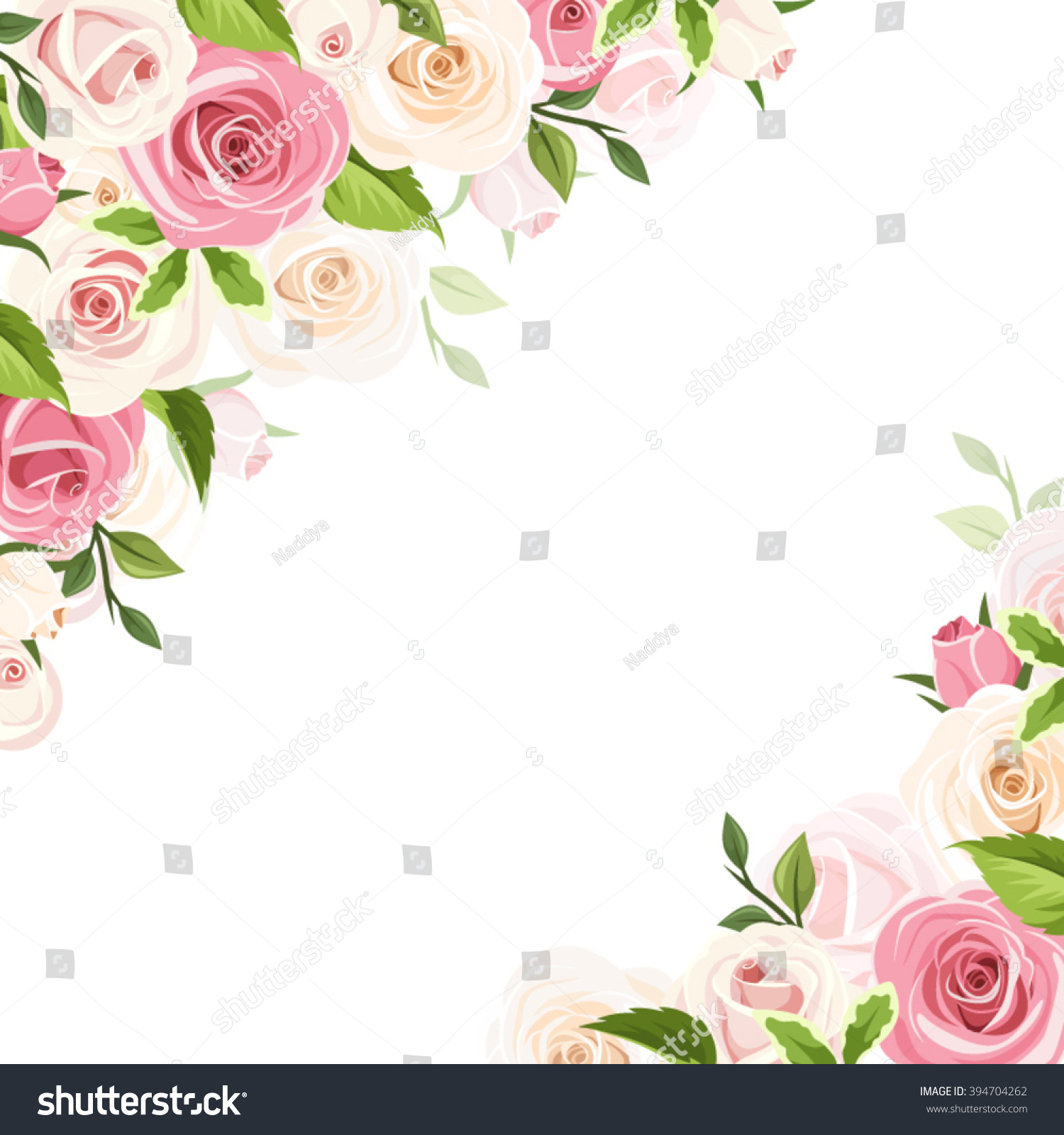 Vector White Background With Pink And White Roses And Green Leaves