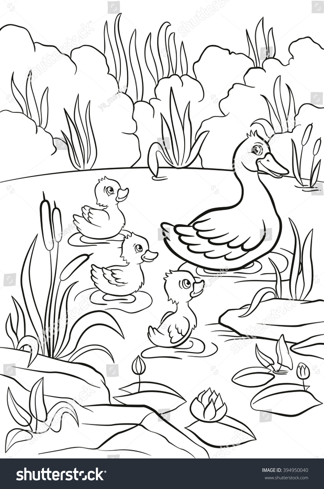 coloring pages kind duck free little stock vector 394950040
