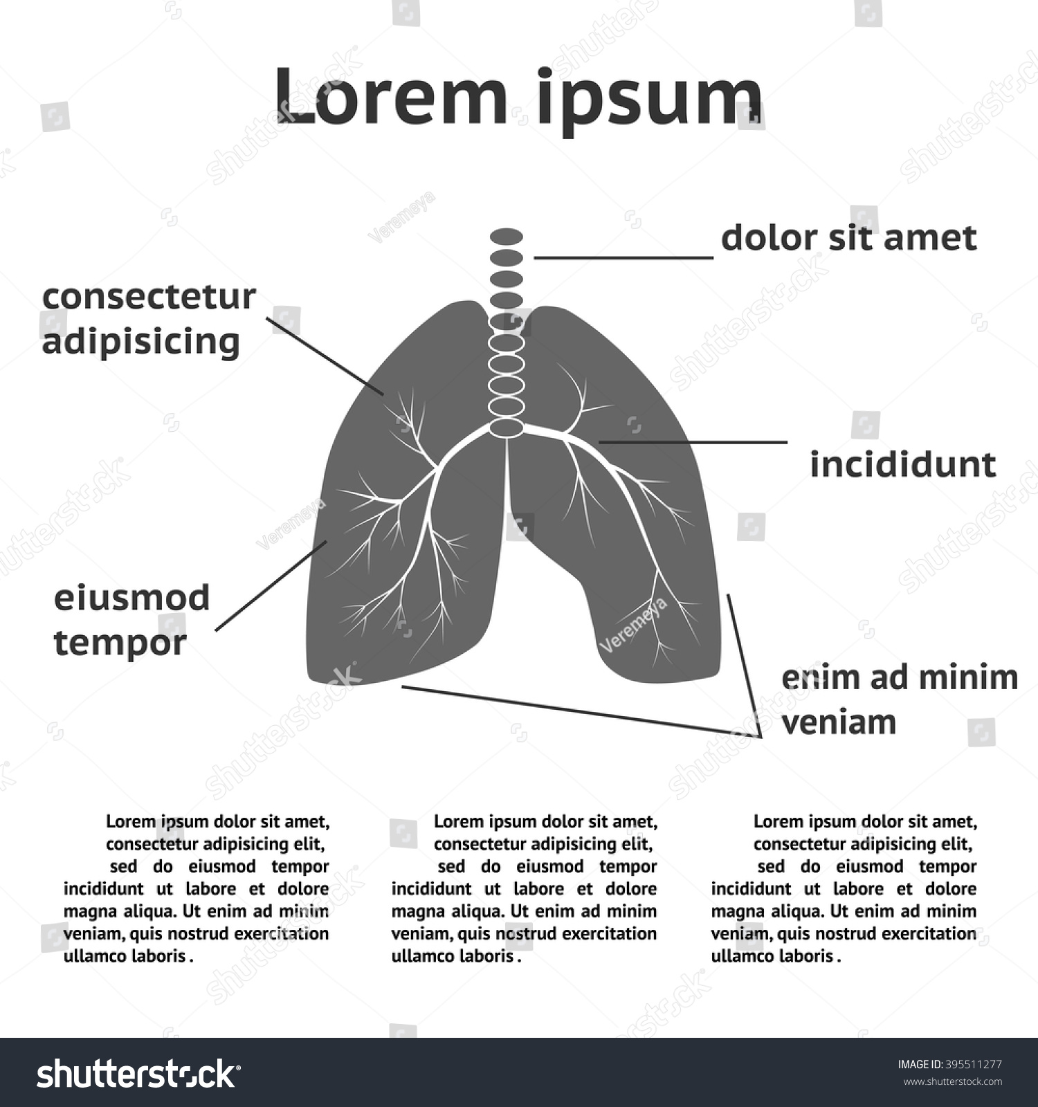 lung structure infographic template can be stock vector 395511277, Powerpoint templates