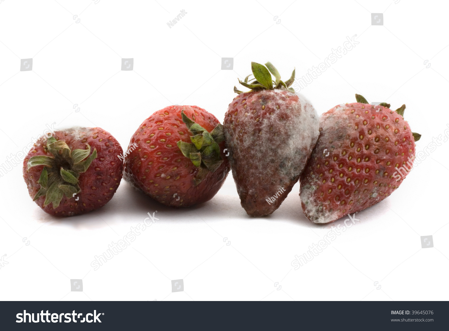 Rotten Strawberries High Resolution Image ...