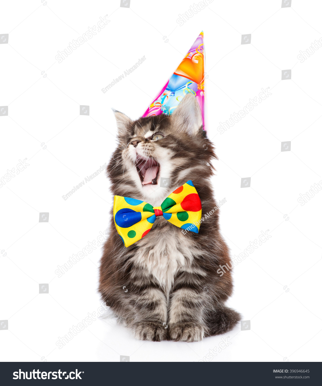 Cat In Birthday Hat With Open Mouth Isolated On White Background