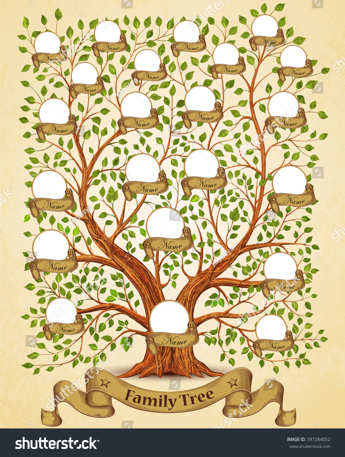 family tree template vintage vector illustration stock