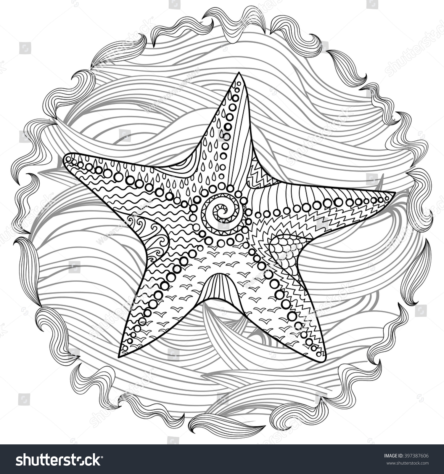 starfish high details antistress coloring stock vector