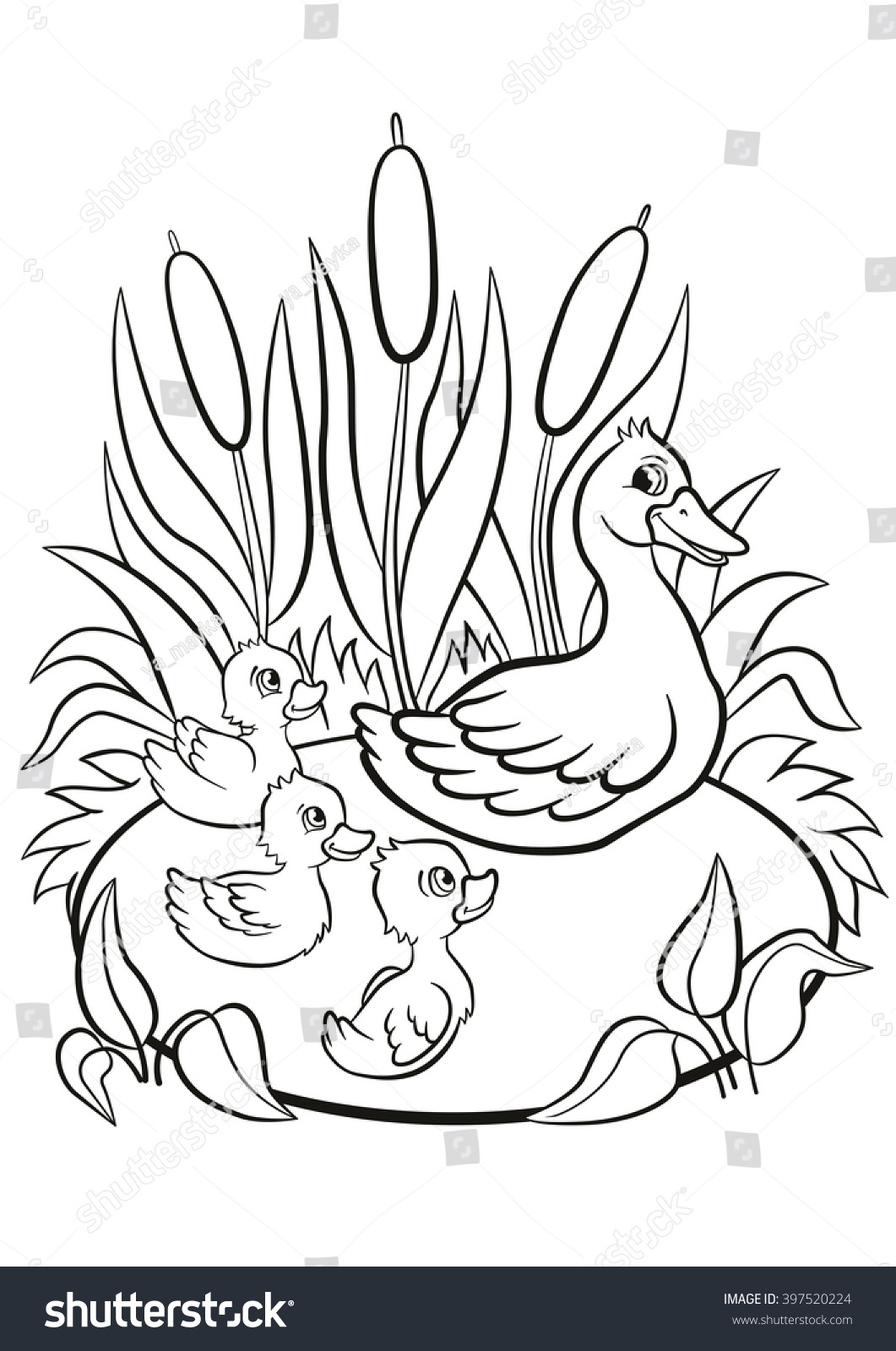 Coloring Pages Kind Duck Free Little Stock Illustration 397520224 ...