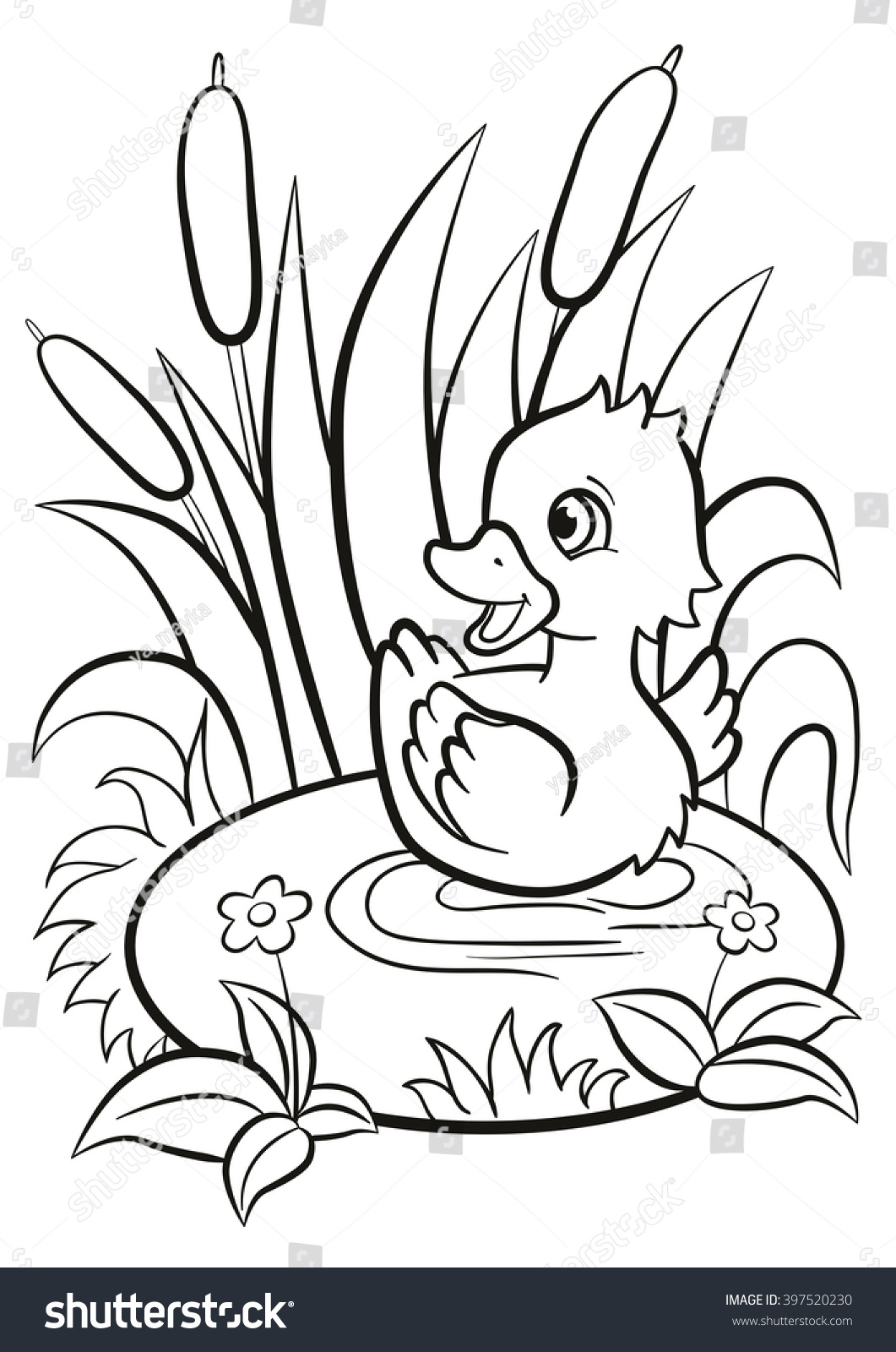 Coloring Pages Little Cute Duckling Swims Stock Illustration ...