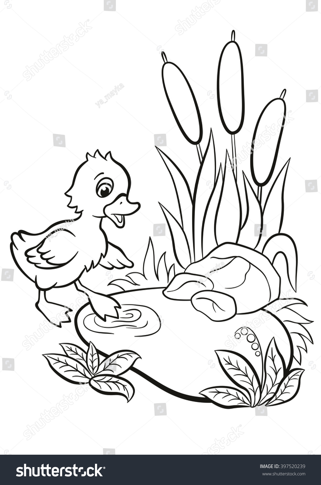 Coloring Pages Little Cute Duckling Tries Stock Illustration ...