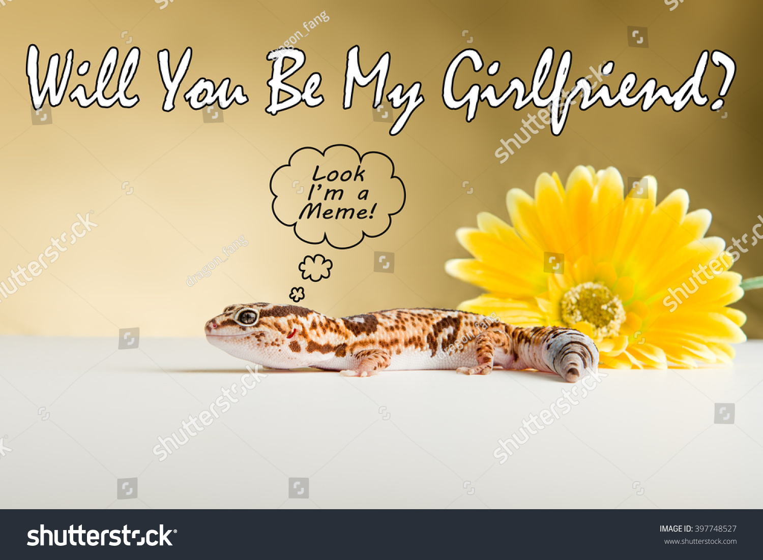 stock photo meme style image featuring a leopard gecko 397748527 meme style image featuring leopard gecko stock photo (100% legal