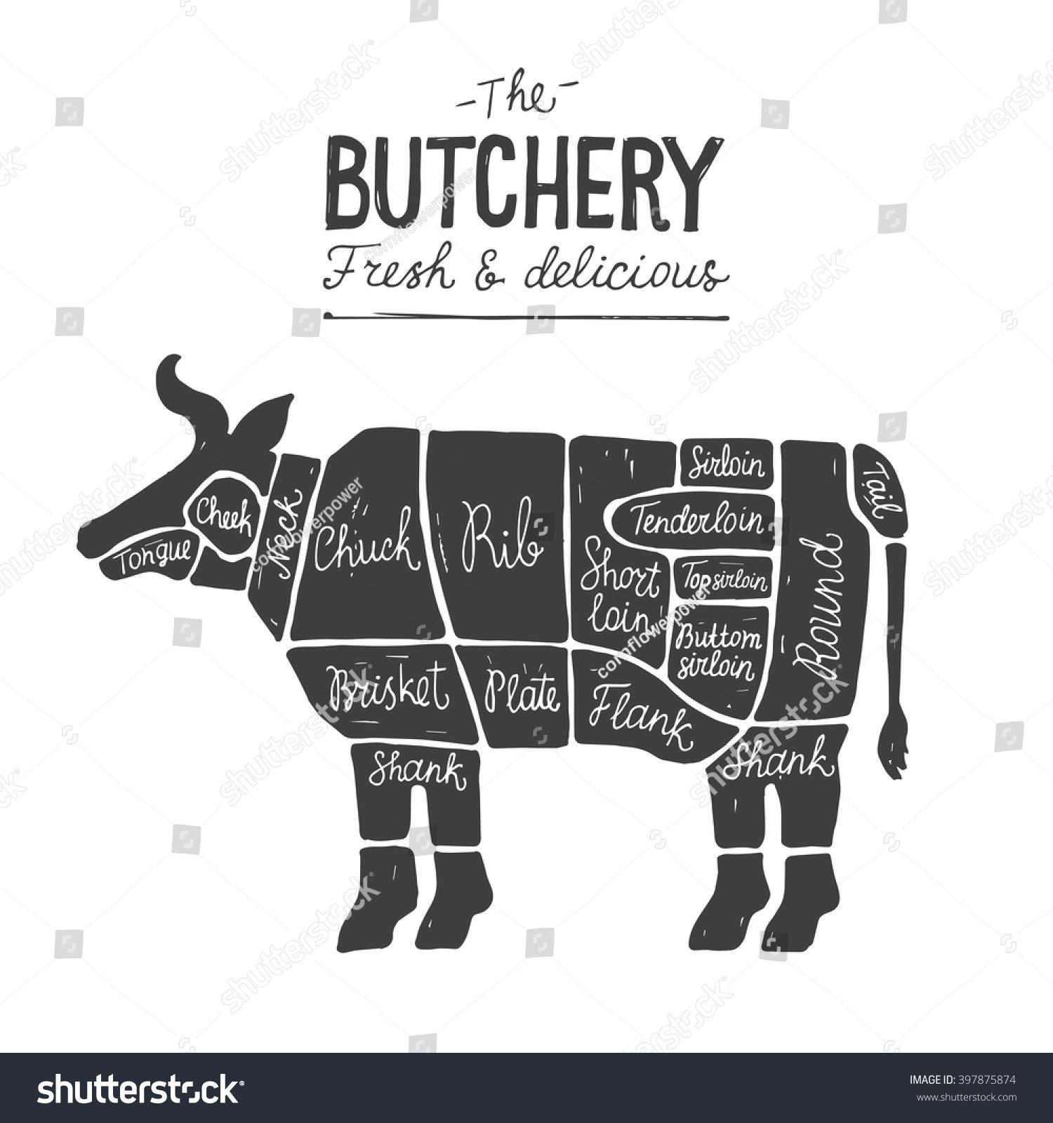 Httpsimageutterstockzstock vector beef pooptronica