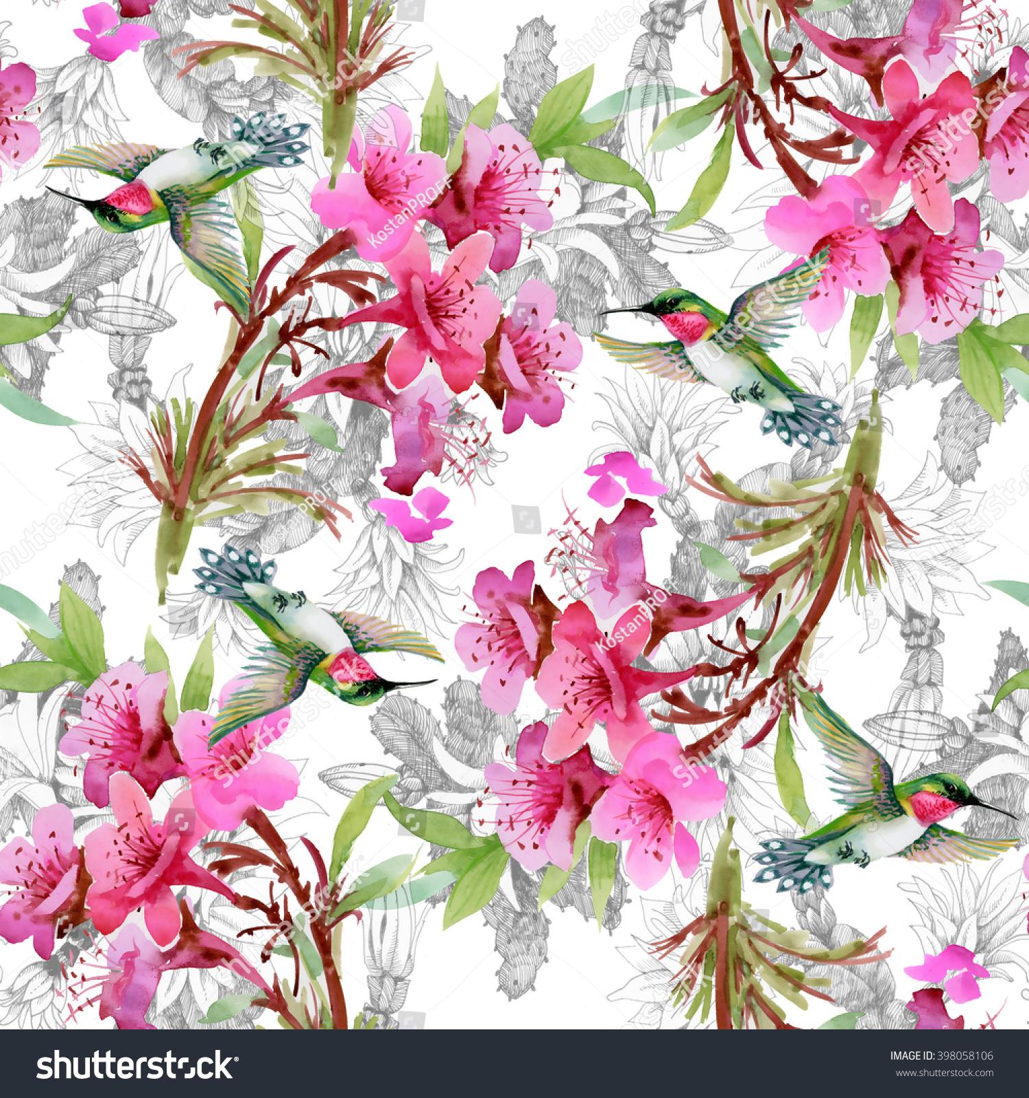 Exotic Little Hummingbirds Beautiful Blooming Flowers Stock