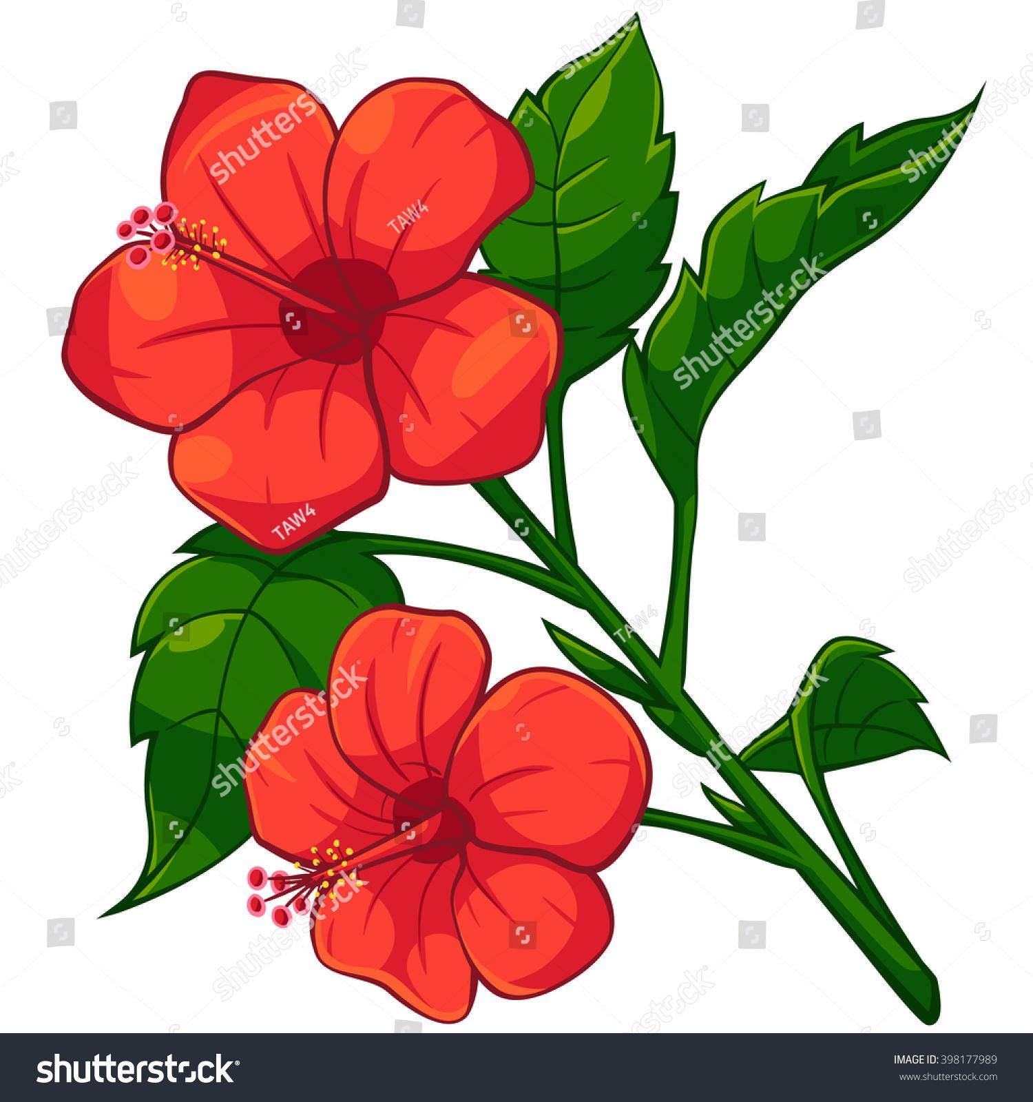 Cartoon Red Hibiscus Vector Cartoon Illustration Stock Vector