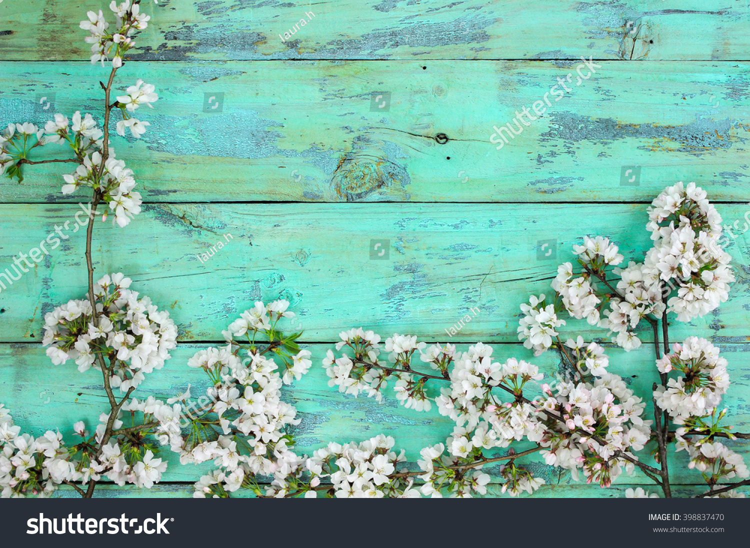 Royalty Free Mint Green Floral Background Stock Images Photos