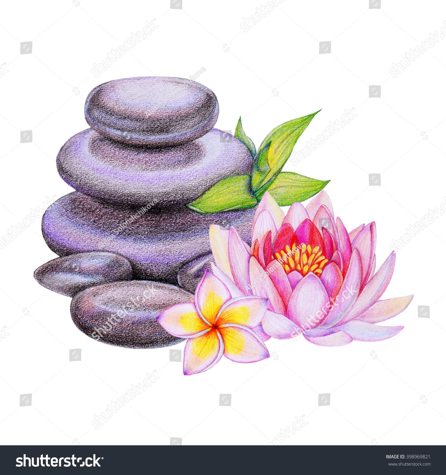 Royalty Free Stock Illustration Of Black Spa Stones Frangipani Pink