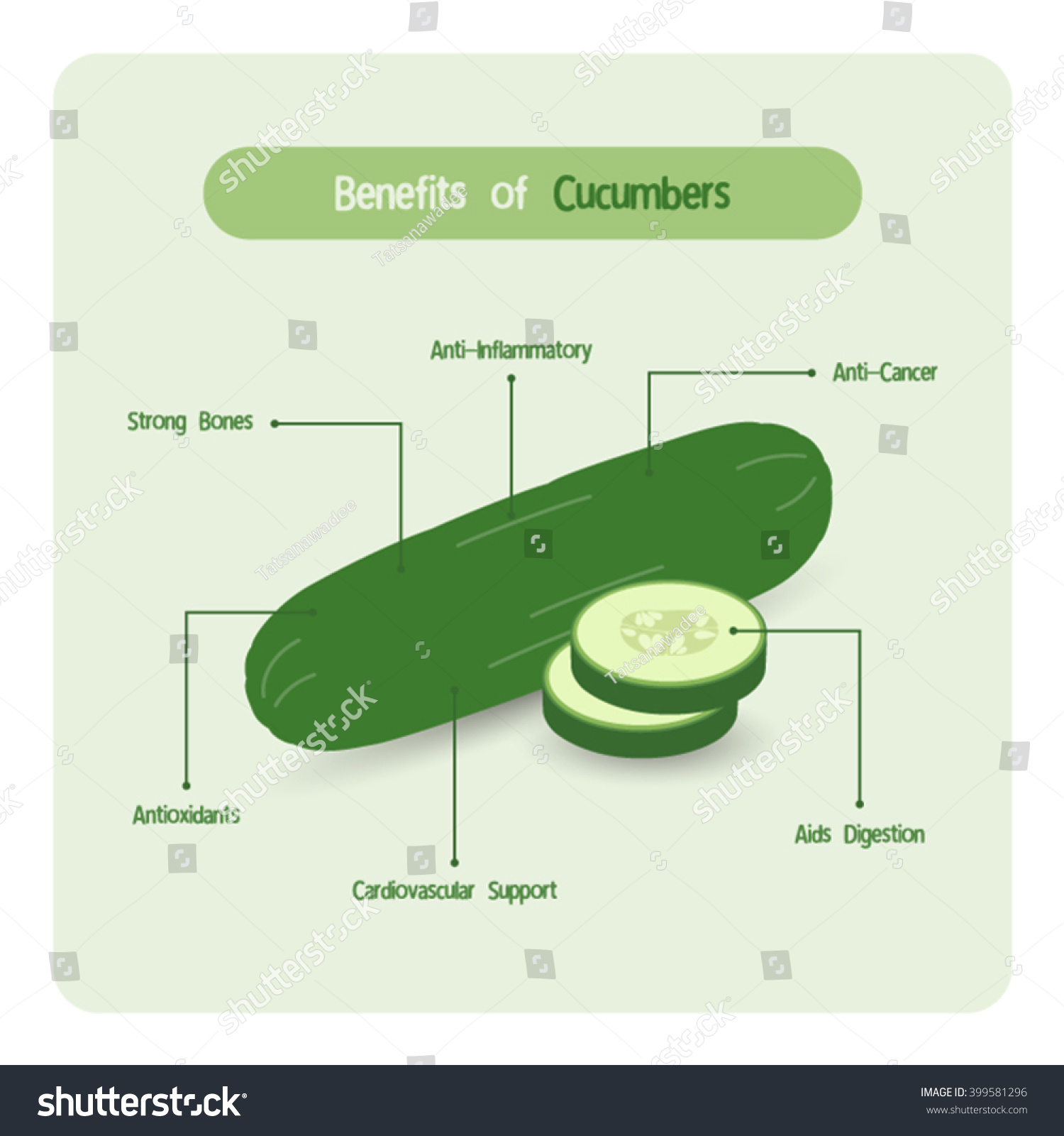 Diagram Of A Cucumber - Library Of Wiring Diagram •