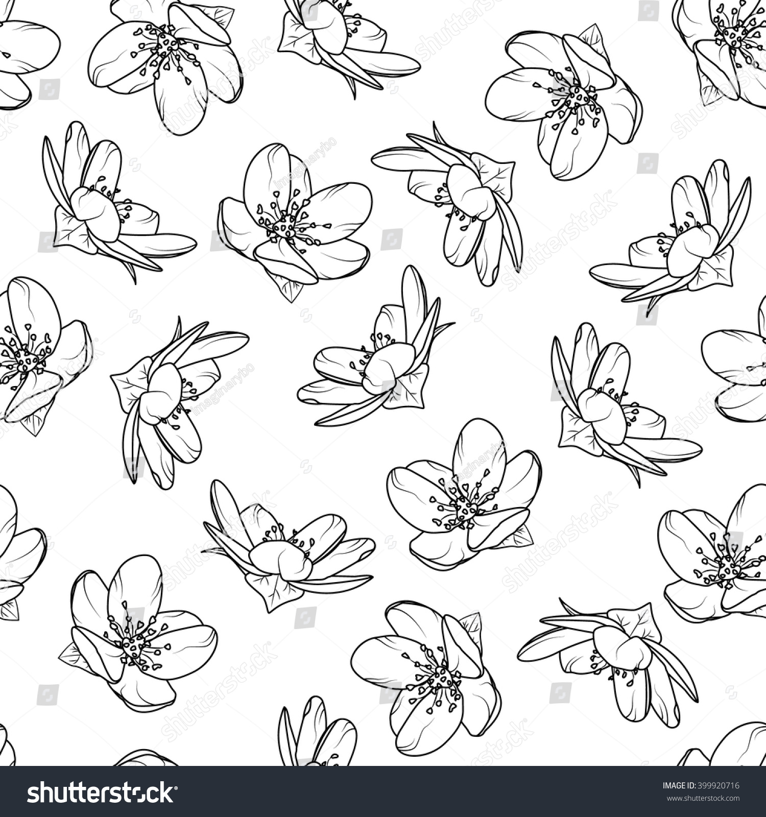 Cherry Blossom Tree Black And White: Cherry Blossom Seamless Pattern Black White Stock Vector