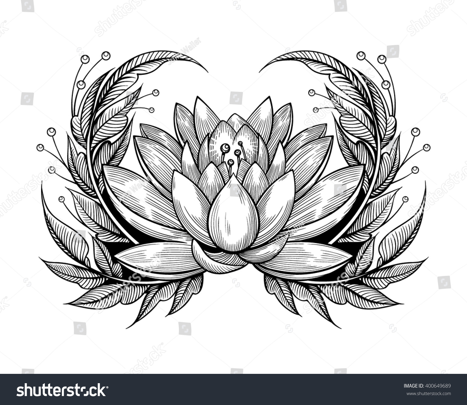 Vector black white tattoo water lily stock vector royalty free vector black and white tattoo water lily illustration izmirmasajfo