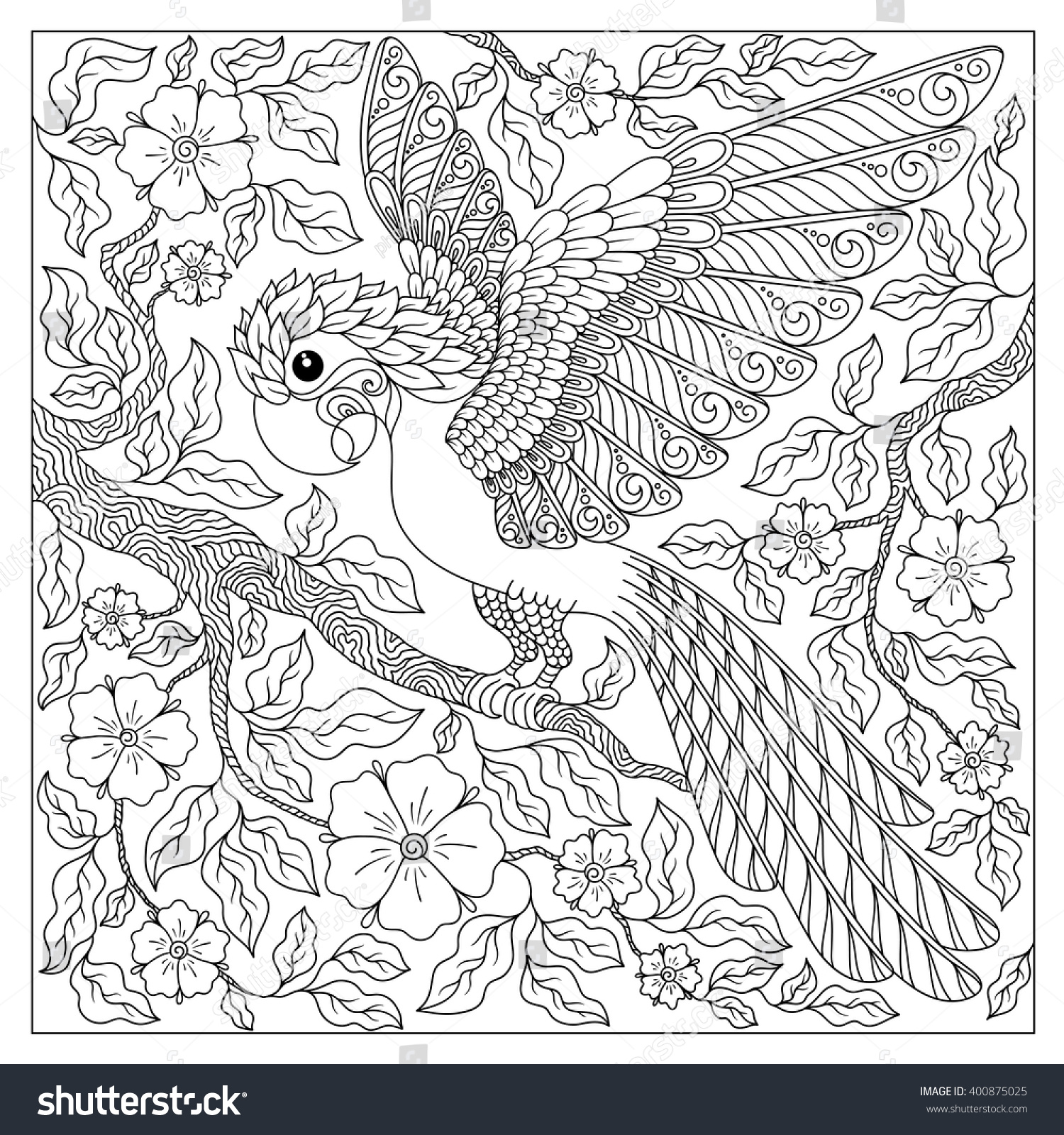 exotic birdfantastic flowersbranches leavescontour thin line stock