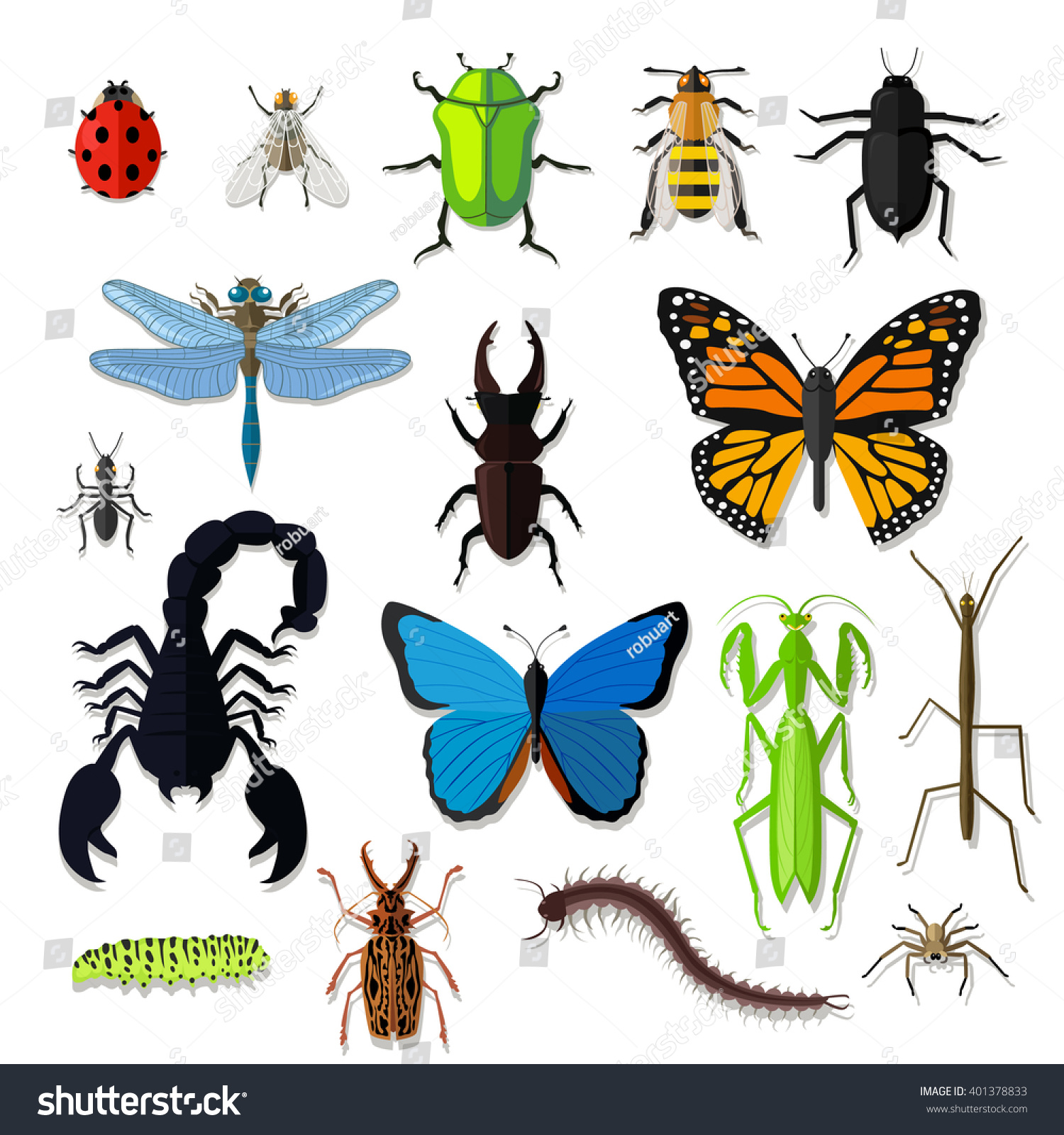 set various insects design flat bug stock vector 401378833