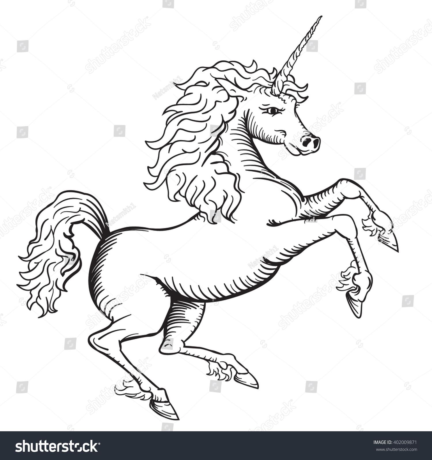 Line Drawing Unicorn : Black white vector drawing unicorn line stock