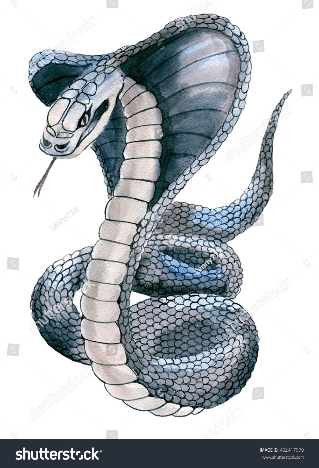 Handwork Watercolor Illustration Cobra Snake White Stock ...