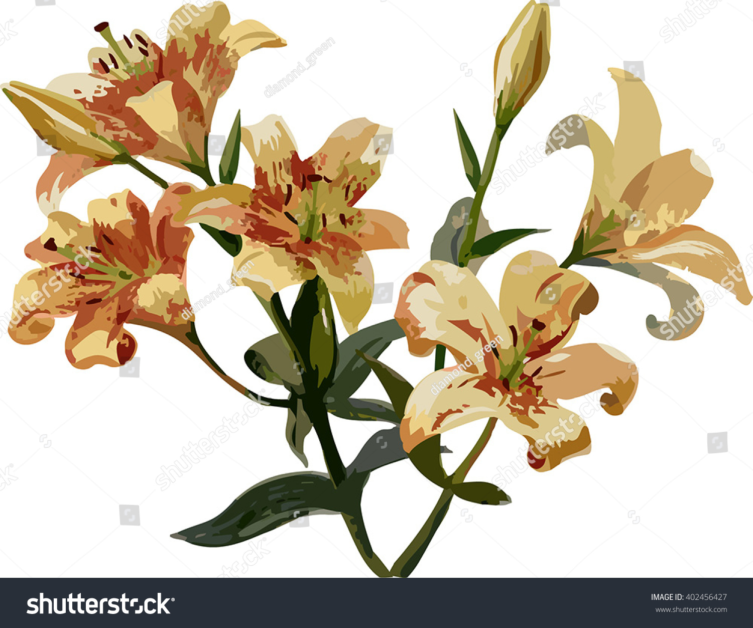 Vector art bouquet lily flowers stock vector royalty free vector art bouquet of lily flowers izmirmasajfo