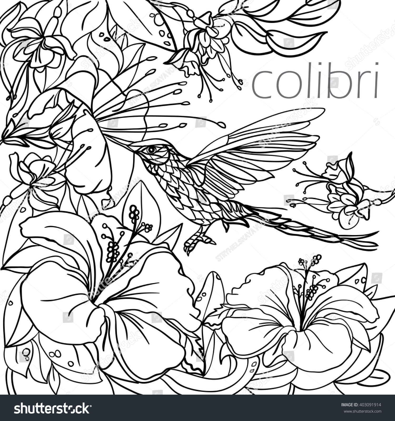 Coloring Pages Tropical Birds Flowers Leaves Stock Vector 403091914 ...