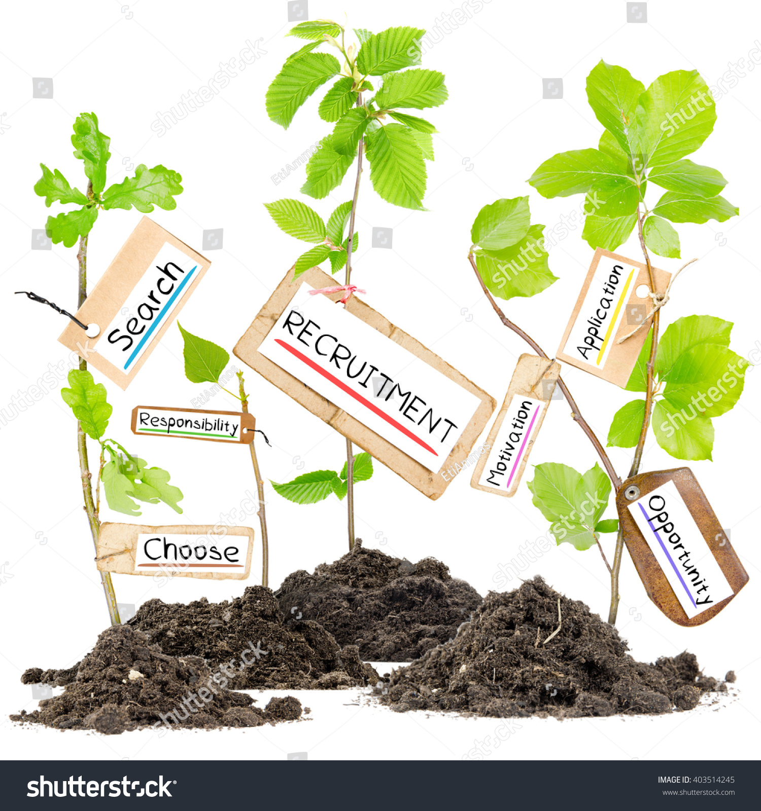 Photo plants growing soil heaps recruitment stock photo for Words for soil
