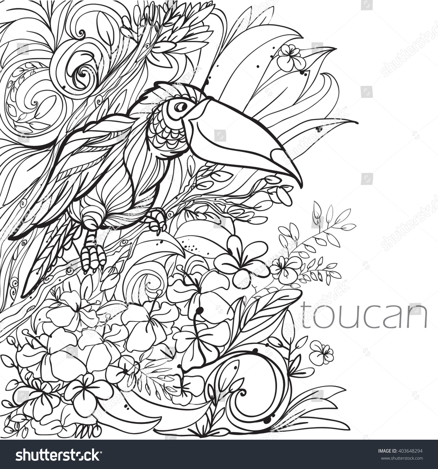 Coloring Pages Tropical Birds Flowers Leaves Stock Vector (Royalty ...