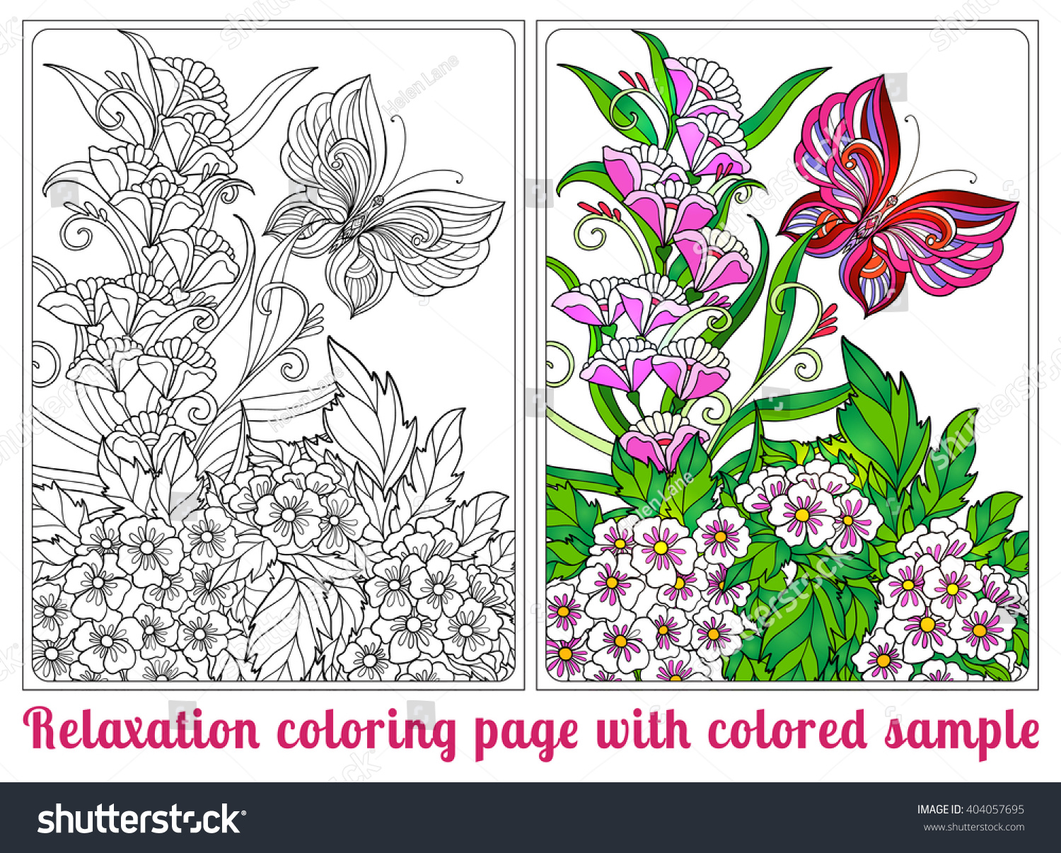 decorative flowers birds butterflies coloring book stock vector