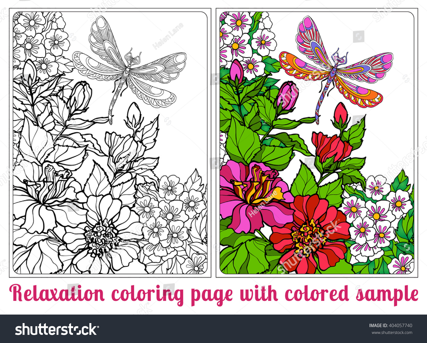 Decorative Flowers Birds Butterflies Coloring Book Stock Vector ...