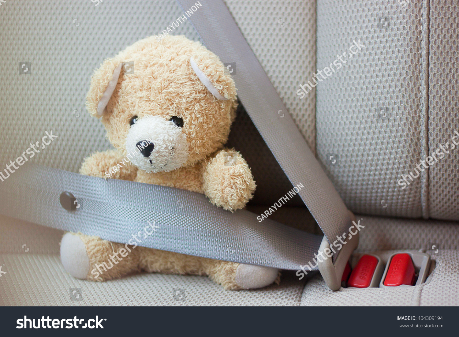 Teddy Bear Fasten Seat Belt for Safety in Car Insurance Concept Safety Concept