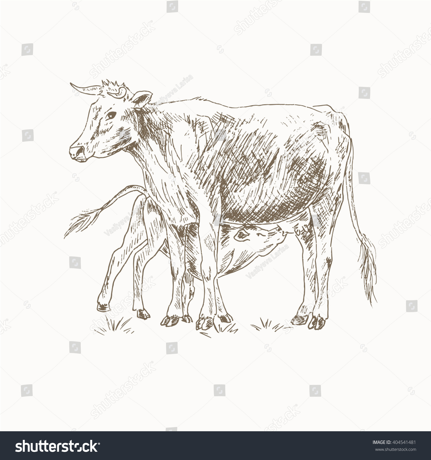 Cow Feeding Calf Sketch Mom Baby Stock Vector Shutterstock - Mother takes amazing pictures ever children animals farm