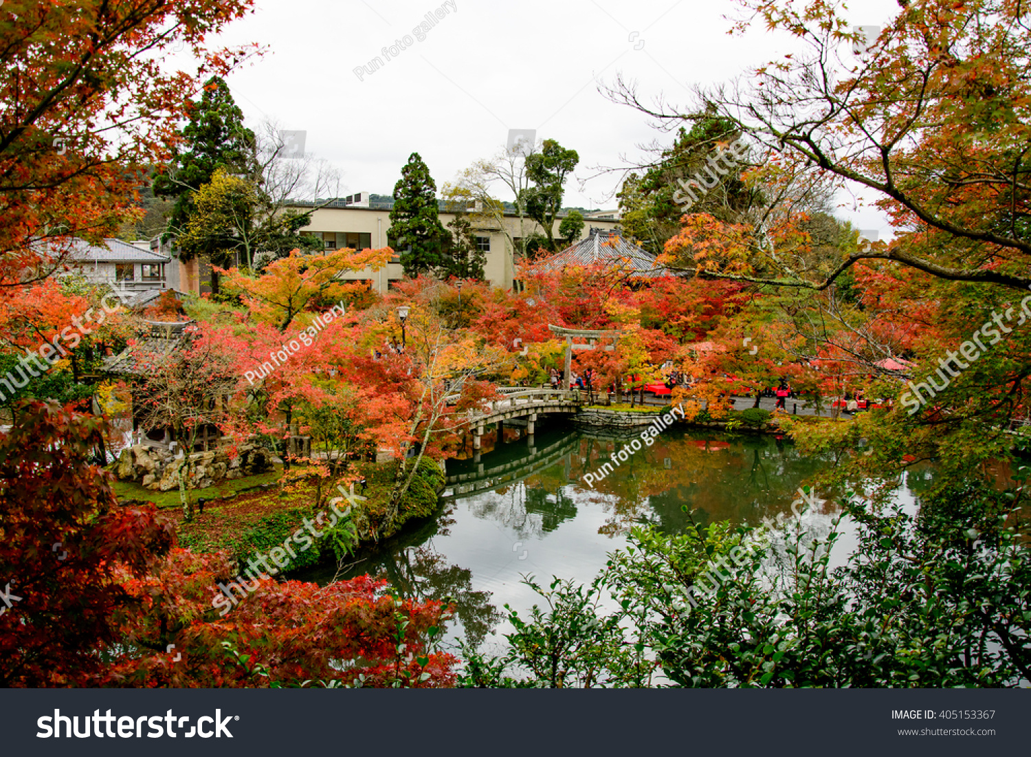 View of the Japanese garden in autumn in Kyoto, Japan. | EZ Canvas