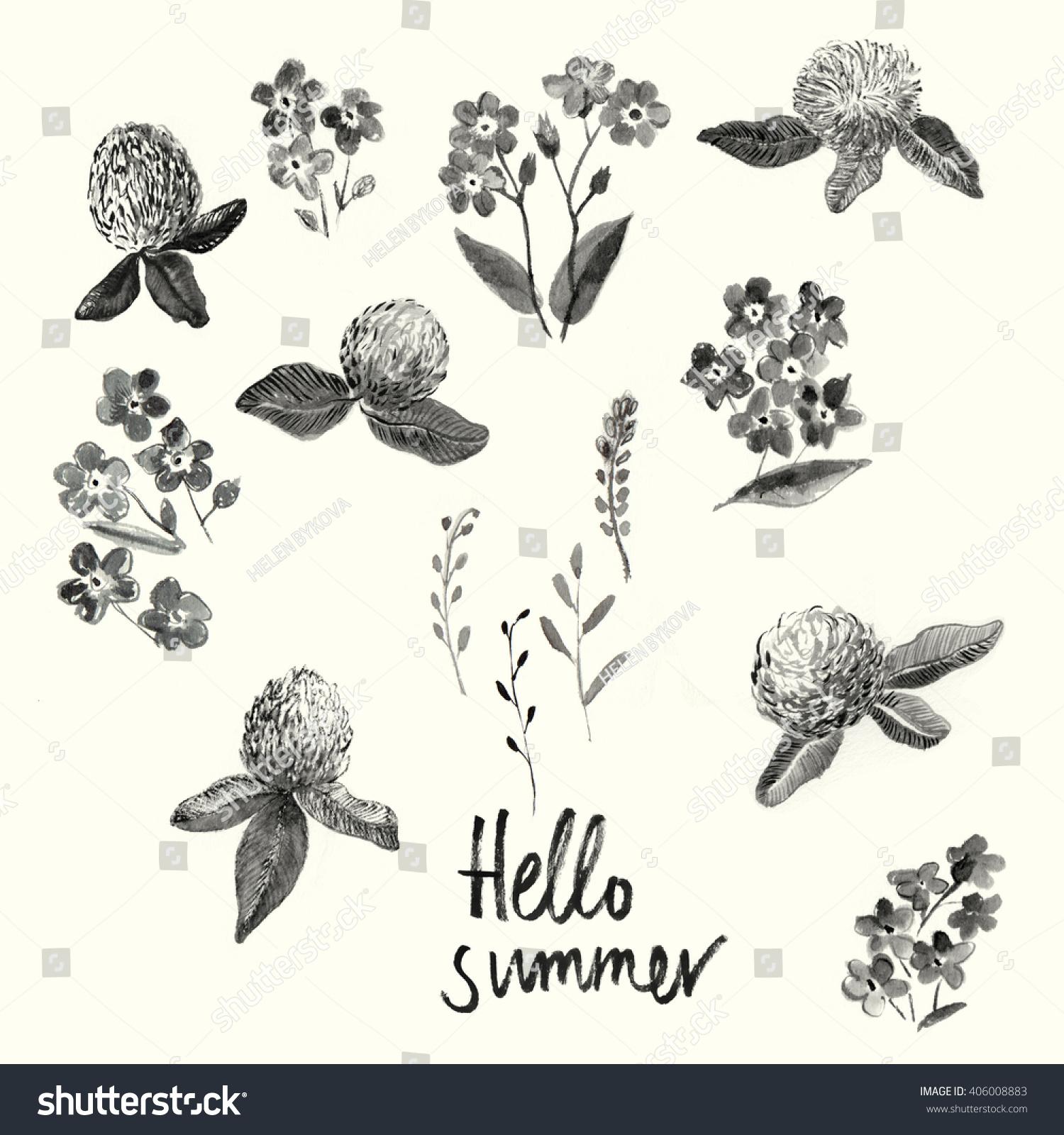 Herbs Wild Flowers Botany Set Icons Stock Illustration 406008883