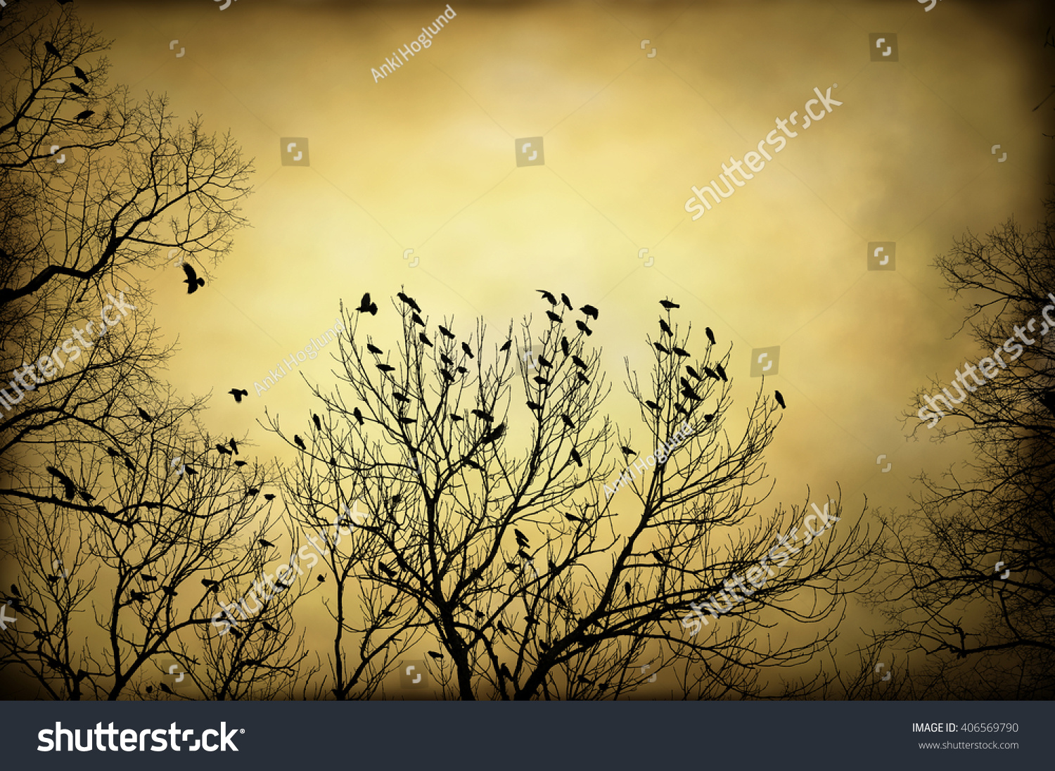 Artistic Textured Image Flock Crows Tree Stock Photo Royalty Free