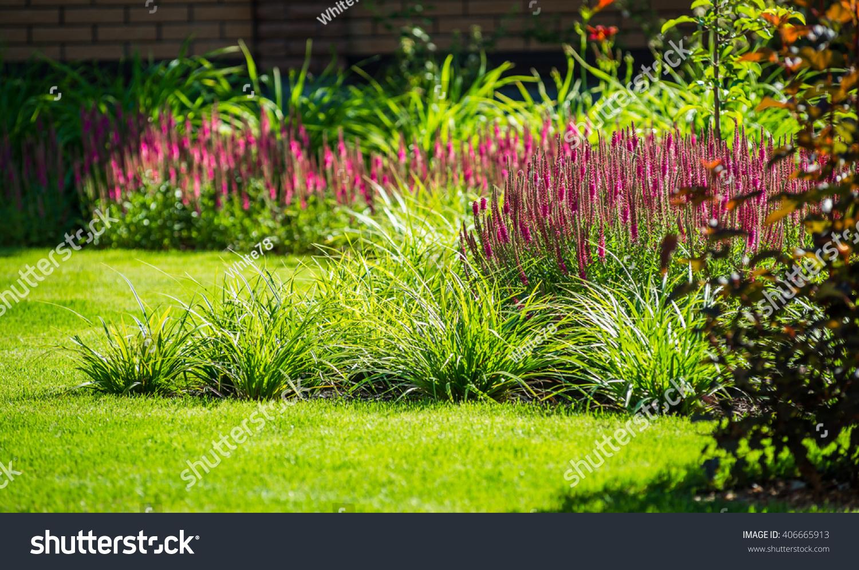 Beautiful Landscaping Beautiful Plants Flowers Stock Photo Edit Now