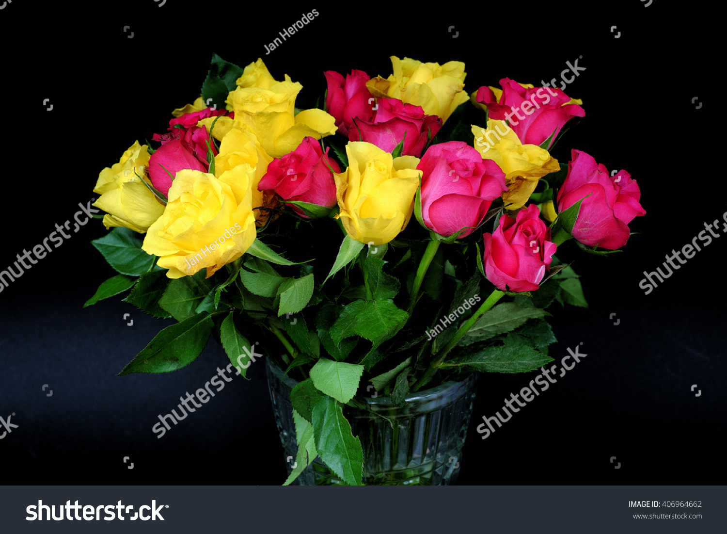 Royalty Free Bouquets Of Fading Yellow And Pink 406964662 Stock