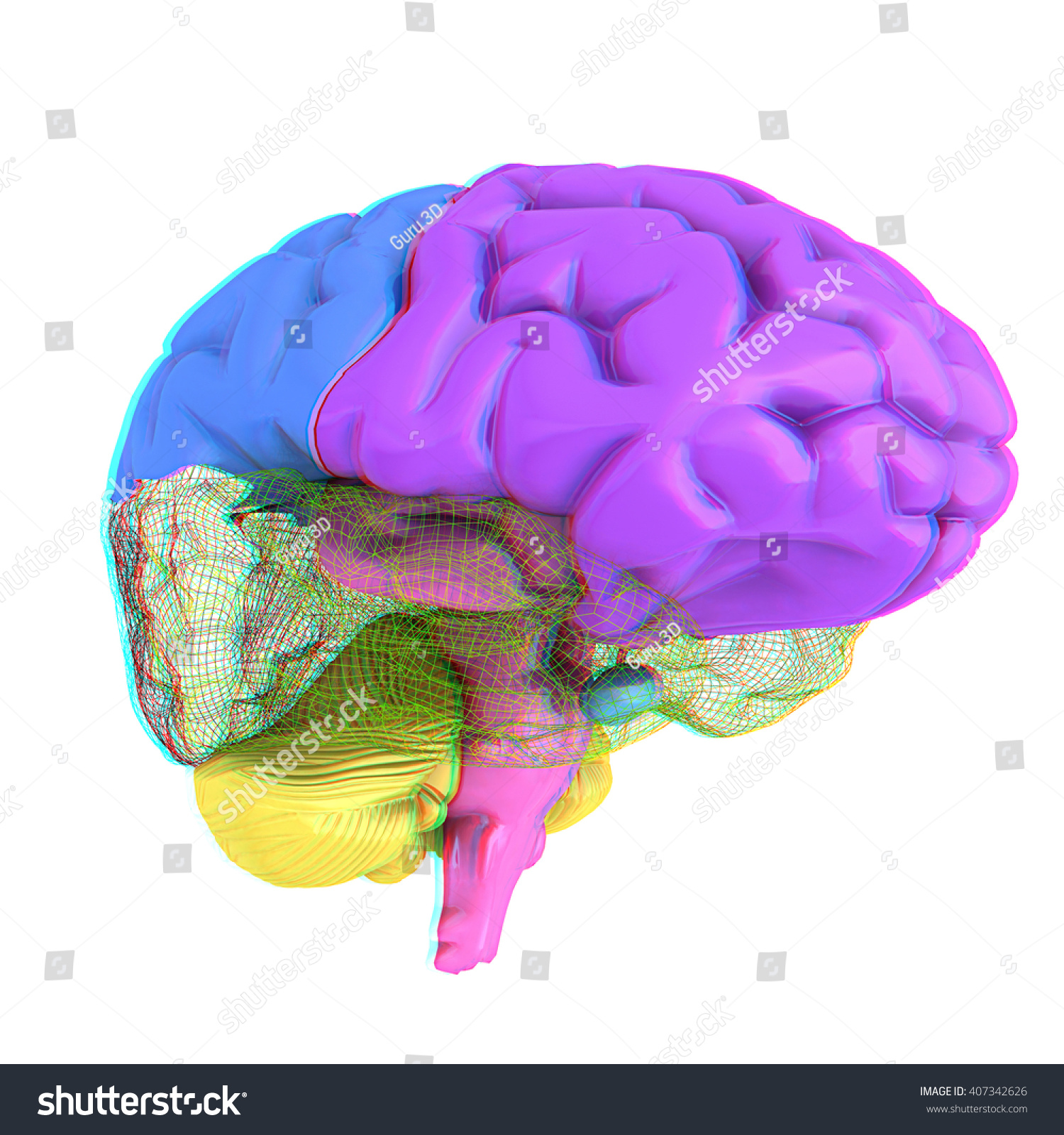 Creative concept of the human brain   EZ Canvas