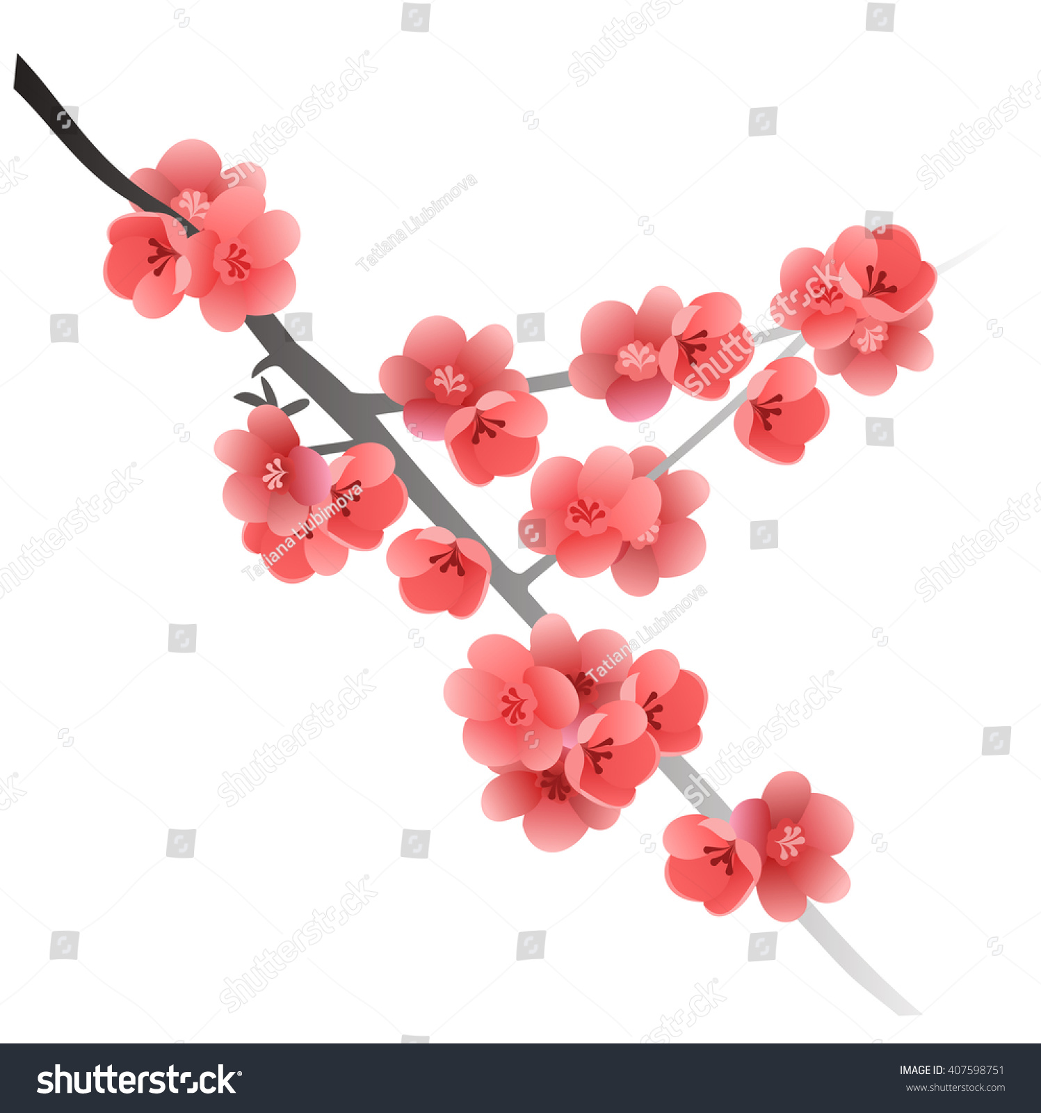 Flowering quince branch chaenomeles japonica hand stock vector flowering quince branch chaenomeles japonica hand drawn vector illustration of japanese quince flowers biocorpaavc Image collections
