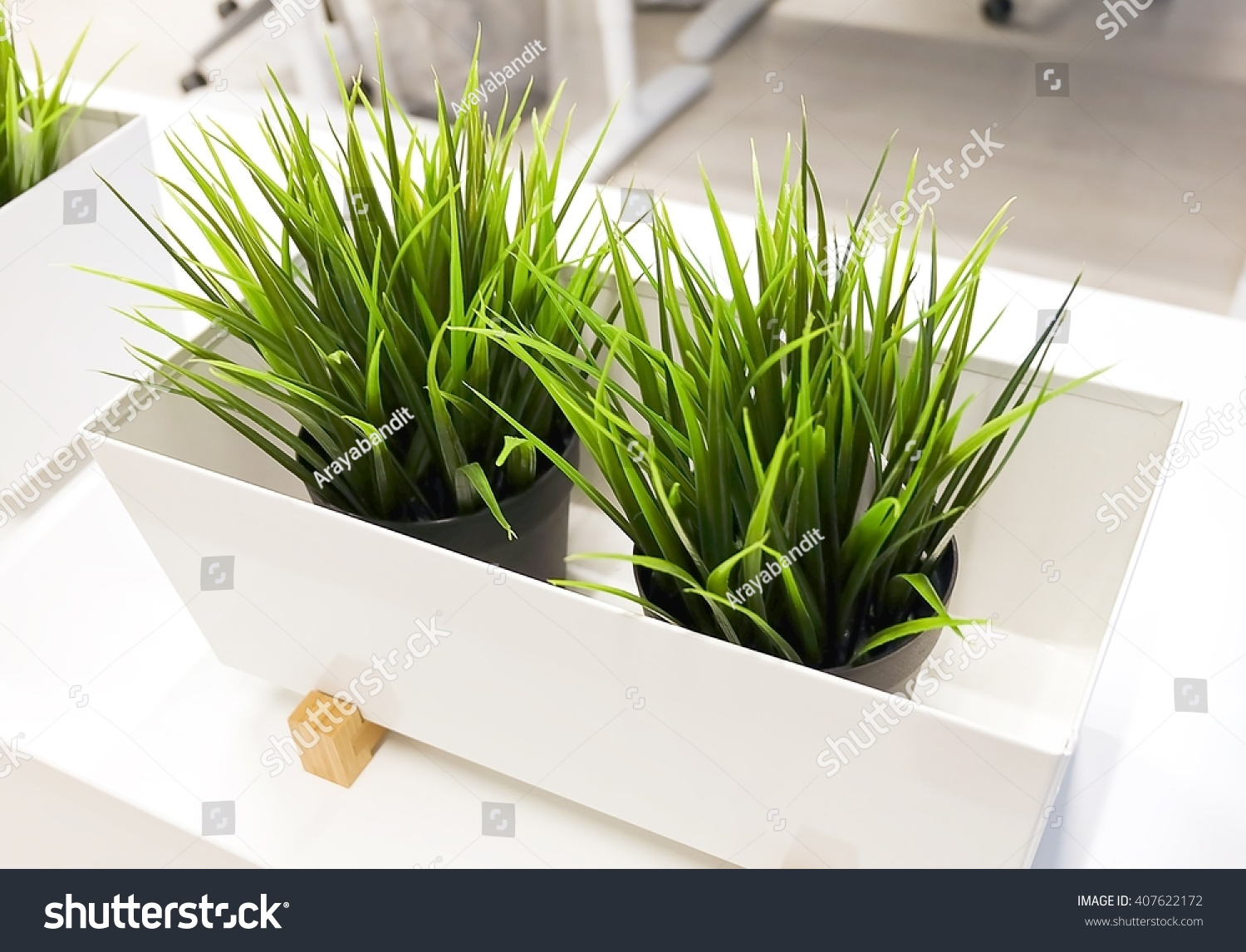 save to a lightbox artificial plants for office decor